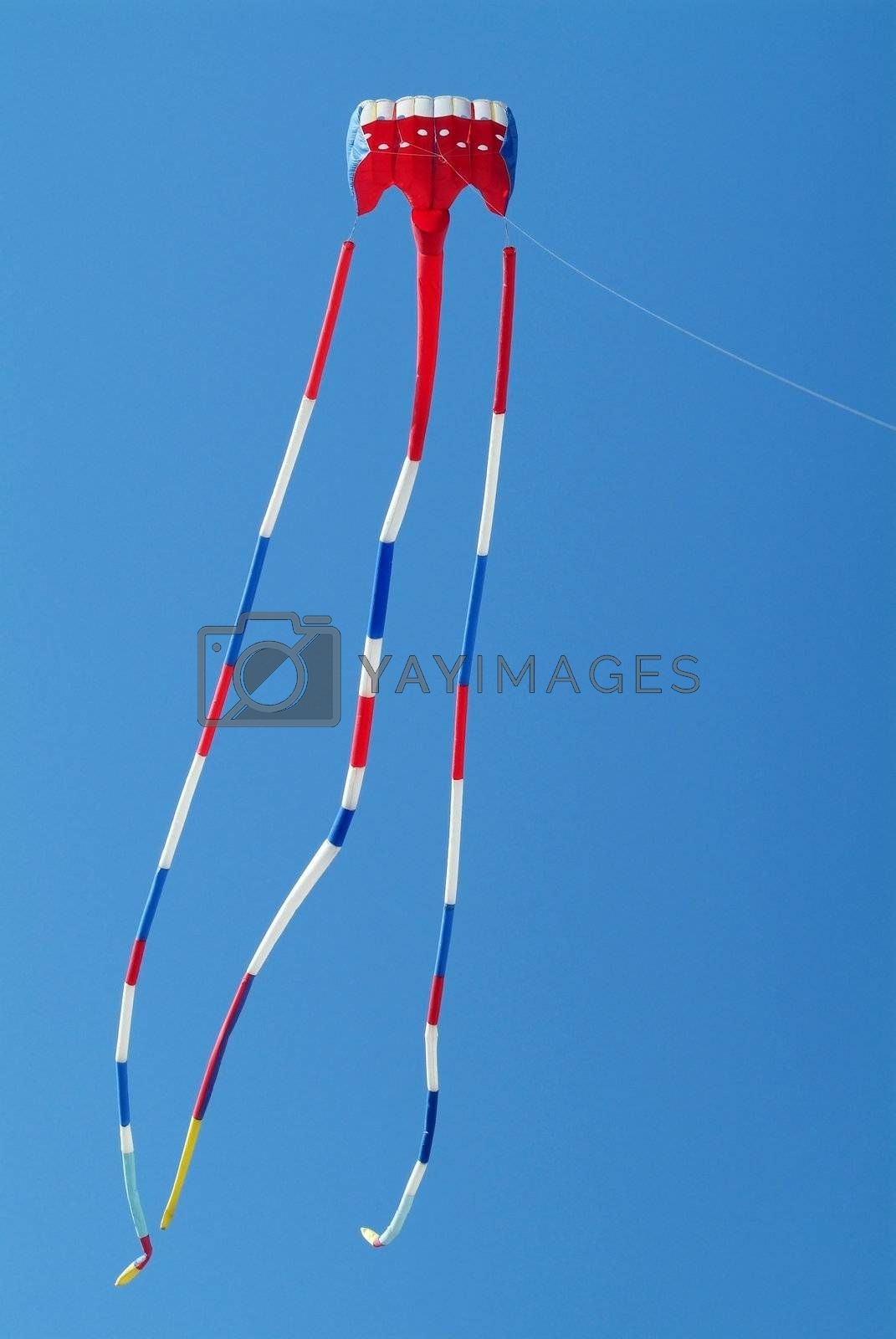 Red, white and blue kite by epixx