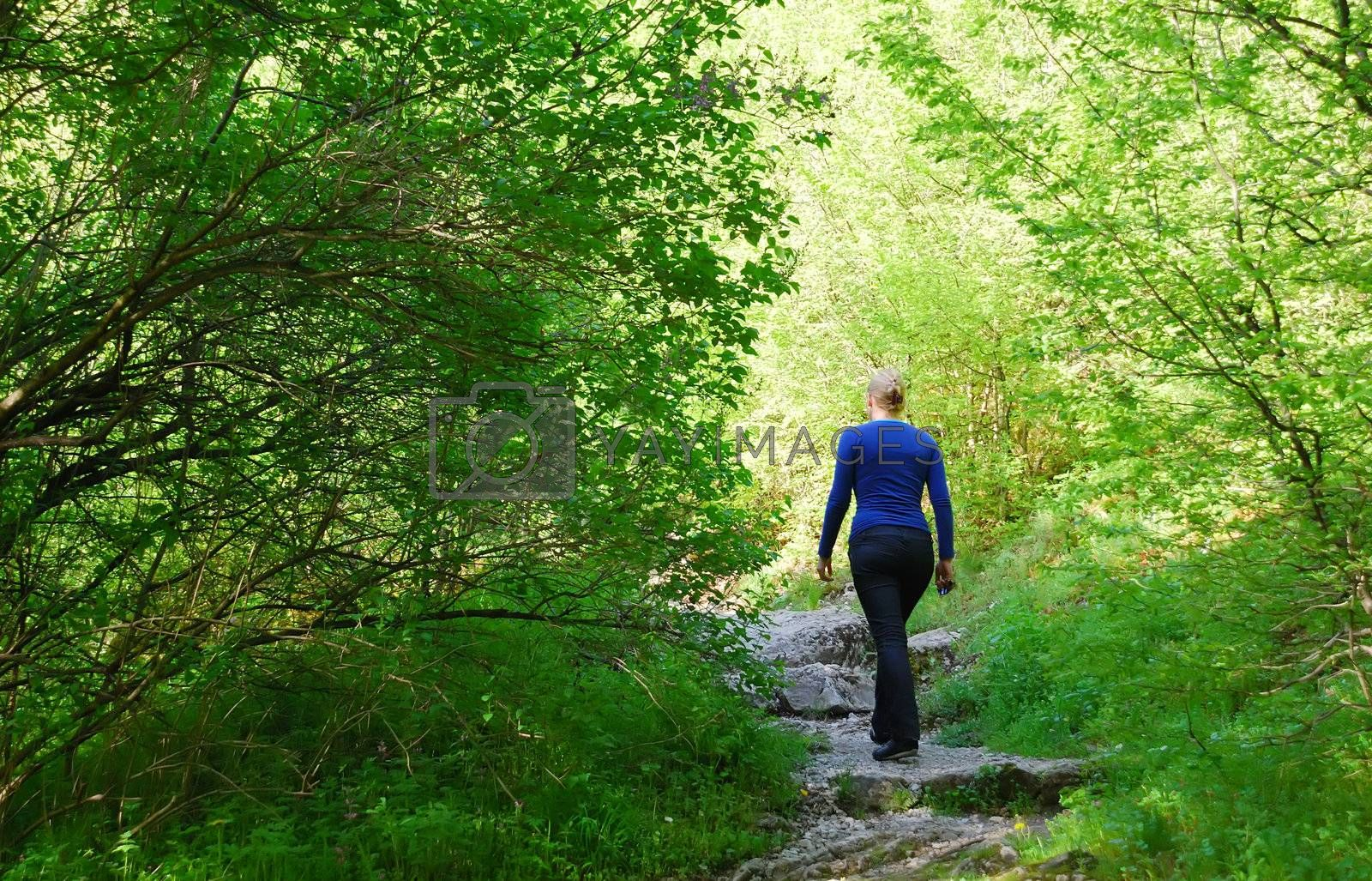 a woman is walking through the forest on a sunny day