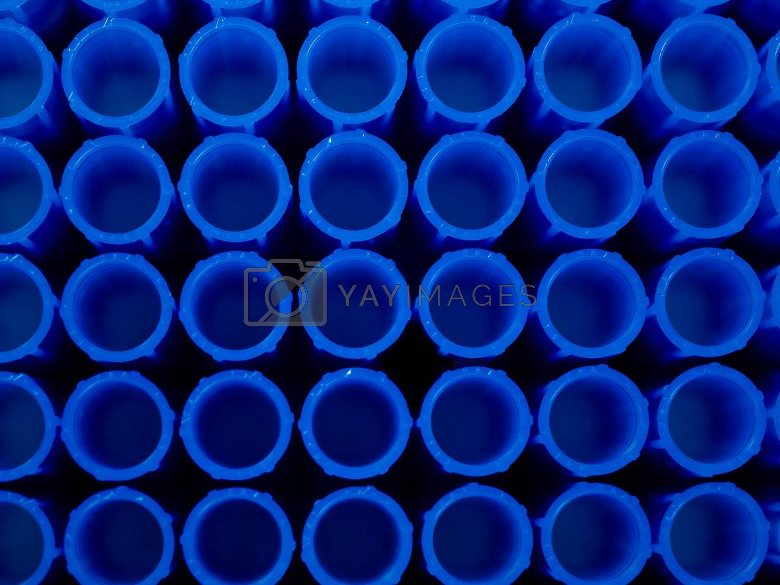 Macro of some laboratory  pipette plastic tips in a rack