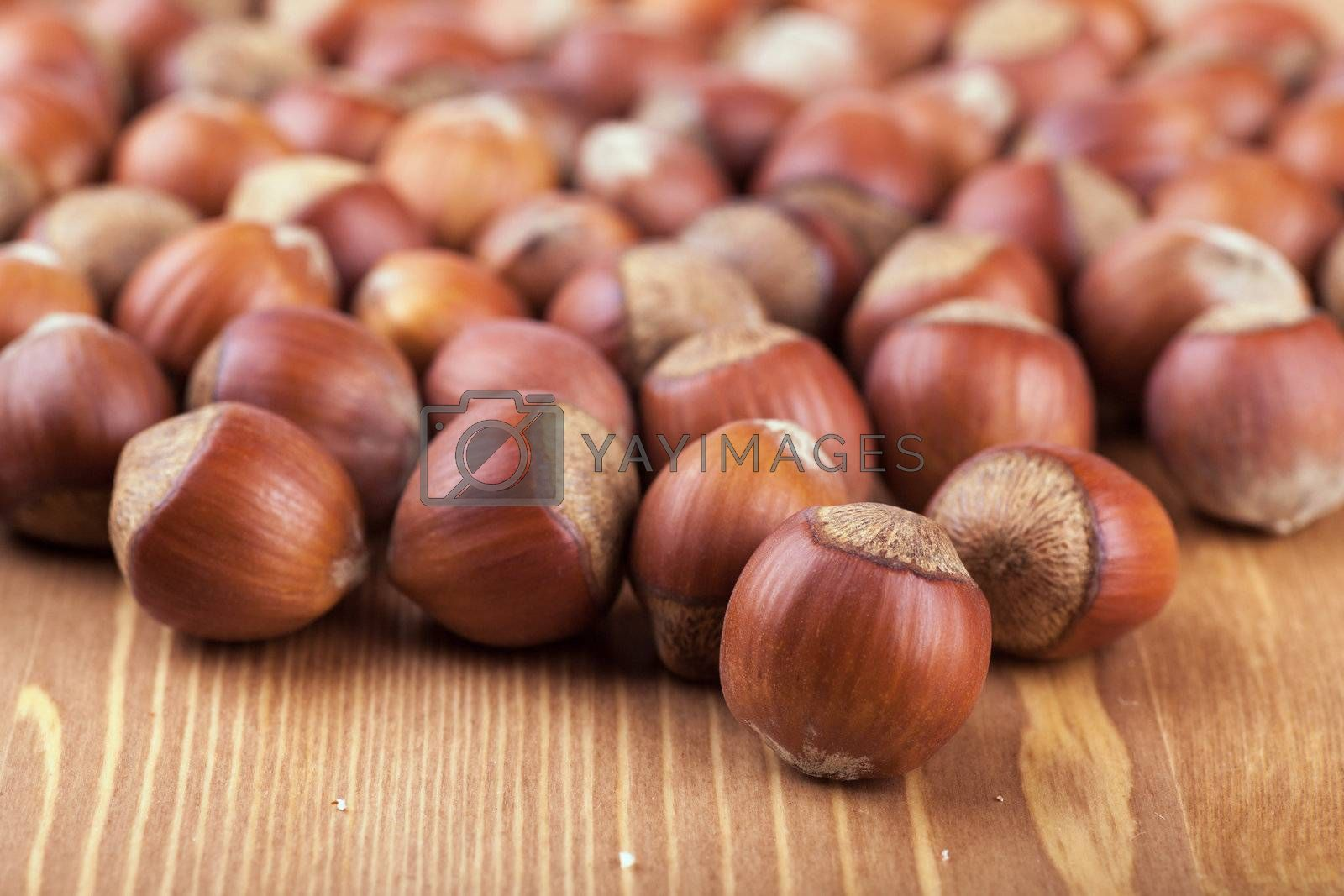 Closeup view of many hazelnuts on a table