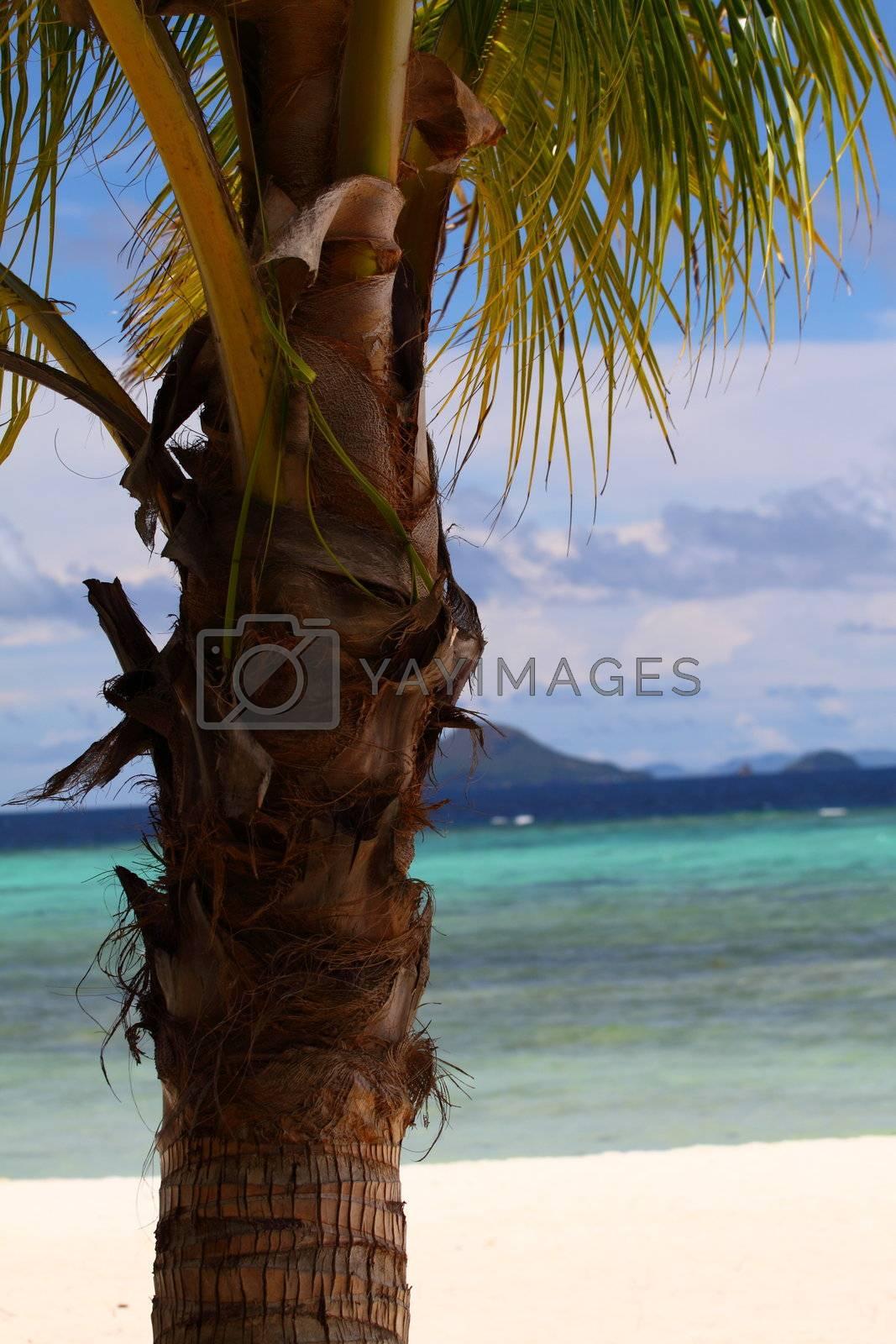 Philippines Coron and Malcapuya Island