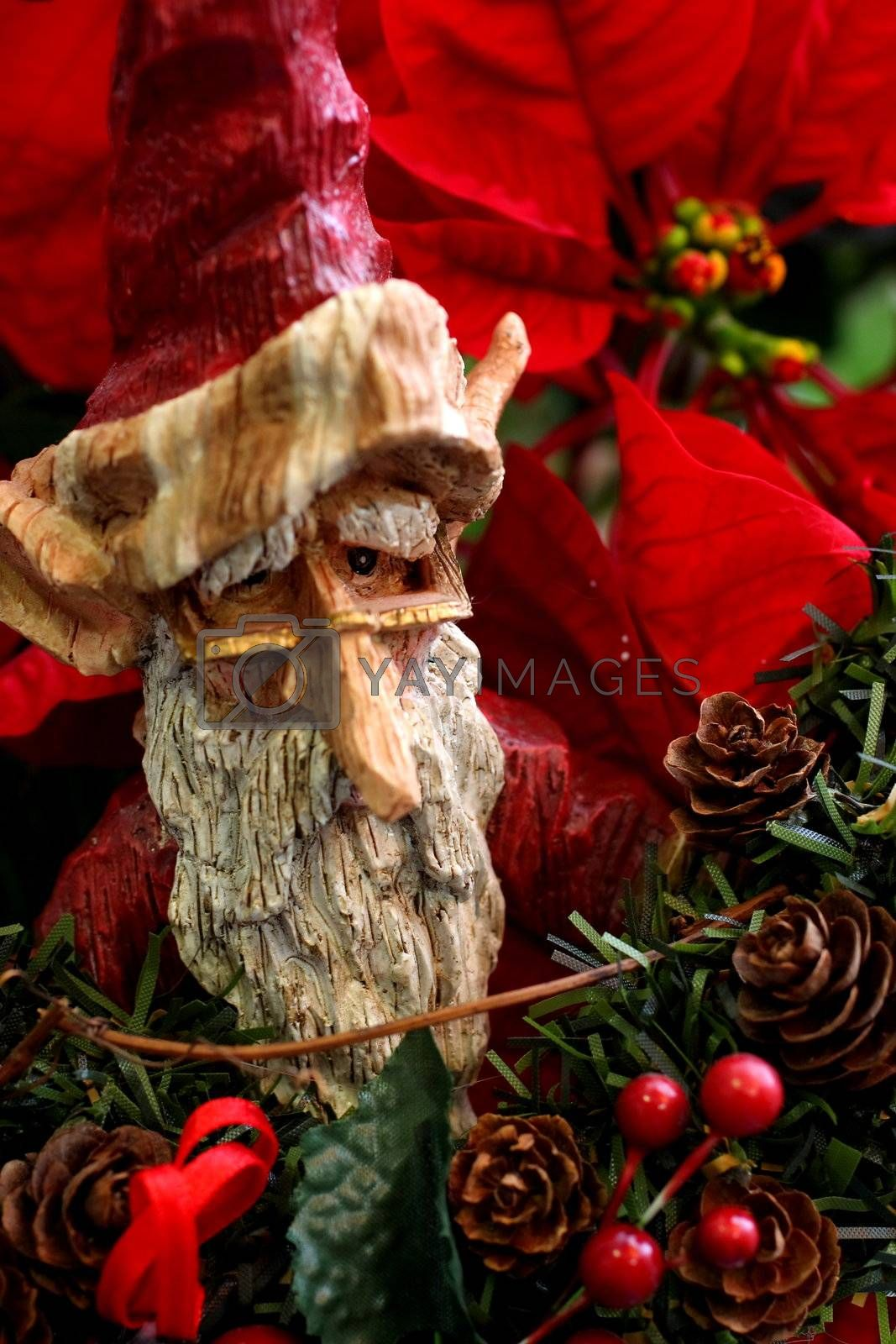 Wooden Statue of Santa Claus elf on poinsetta backdrop
