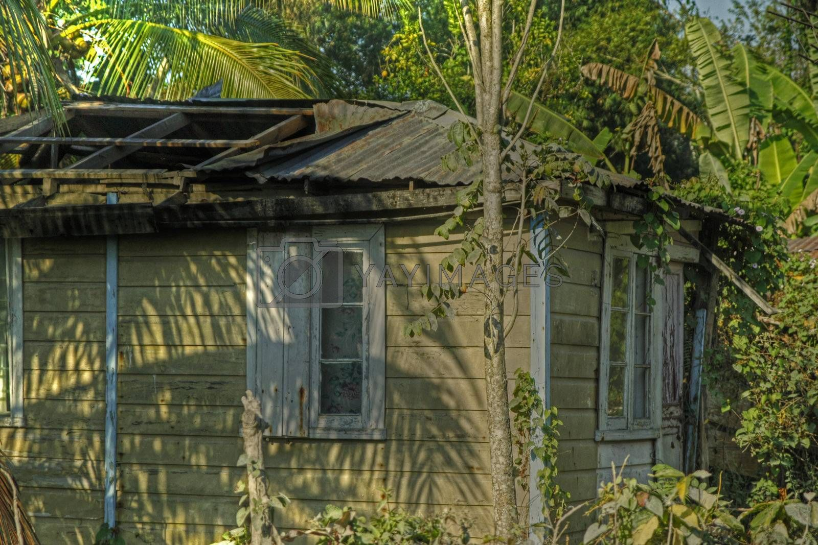 Housing on the side of the Blue Mountain in Jamaica with hole in roof