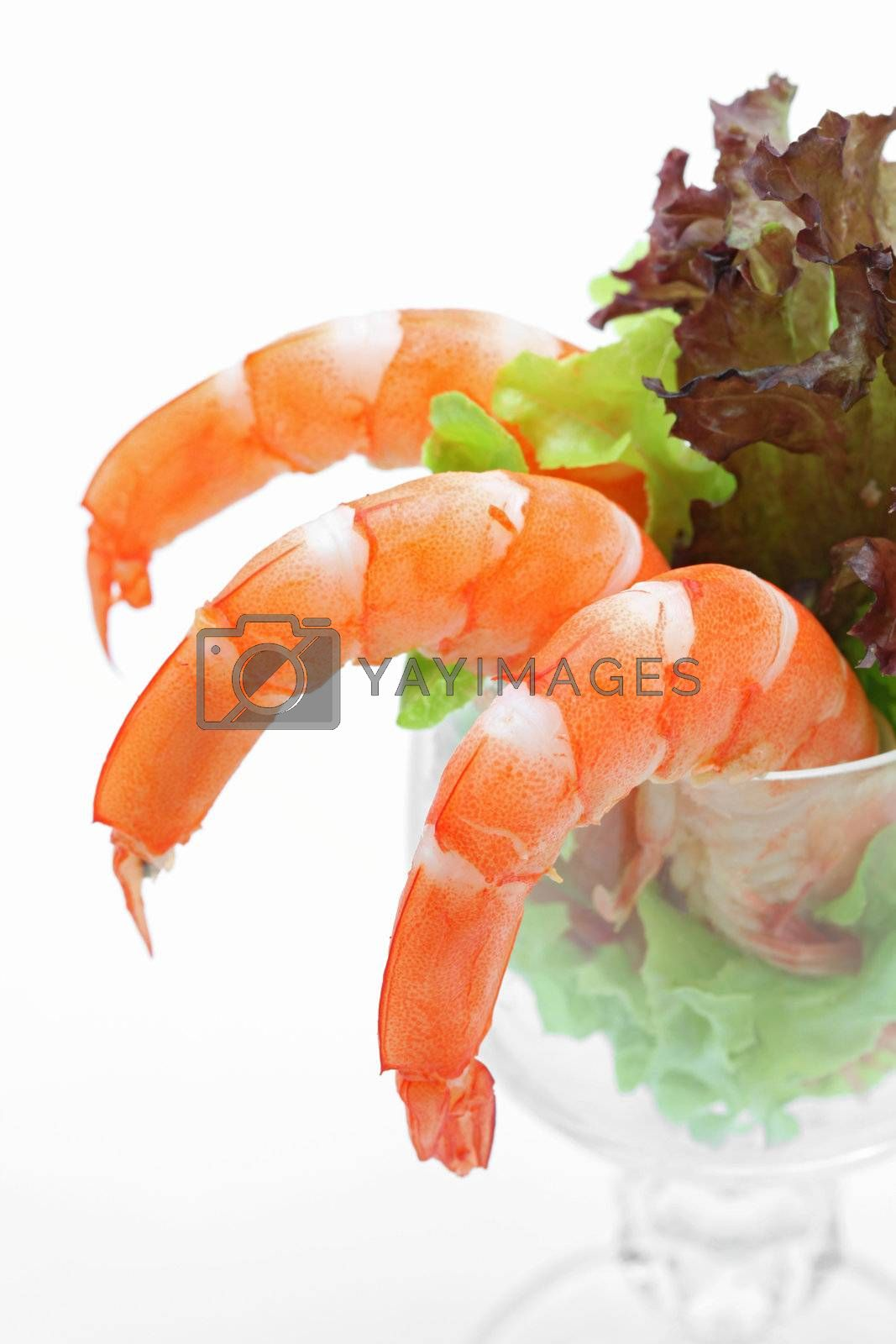 Shrimp cocktail in a martini glass with lettuce, closeup