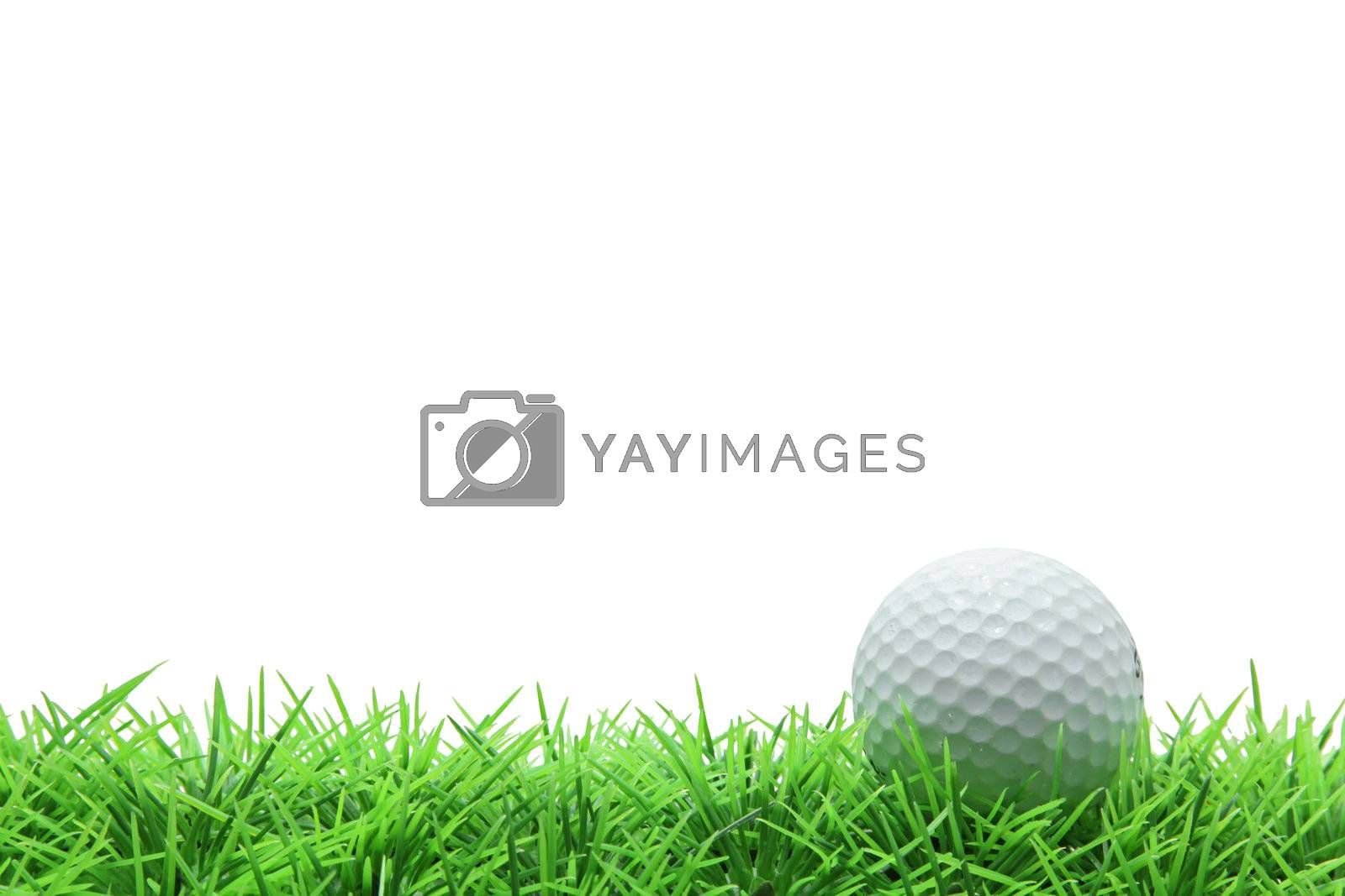 isolated golf ball on green grass over white background