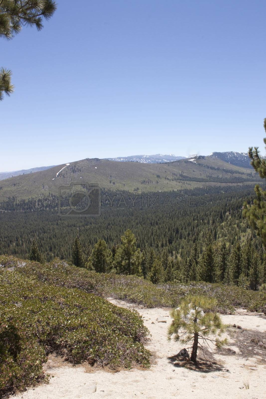 High angle of the Sierra Nevadas with blue sky and granite