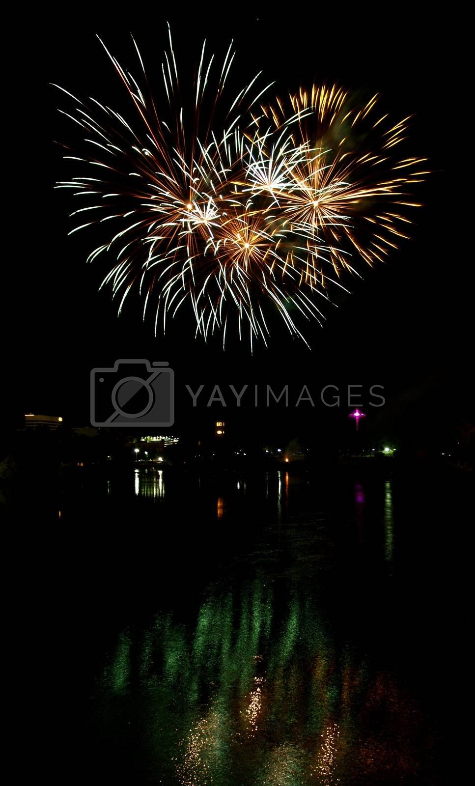 Long Exposure of Multicolored Fireworks Against a Black Sky