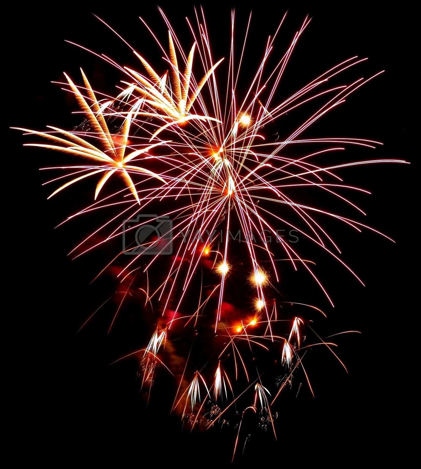 Colorful Fireworks Isolated on a Black Background