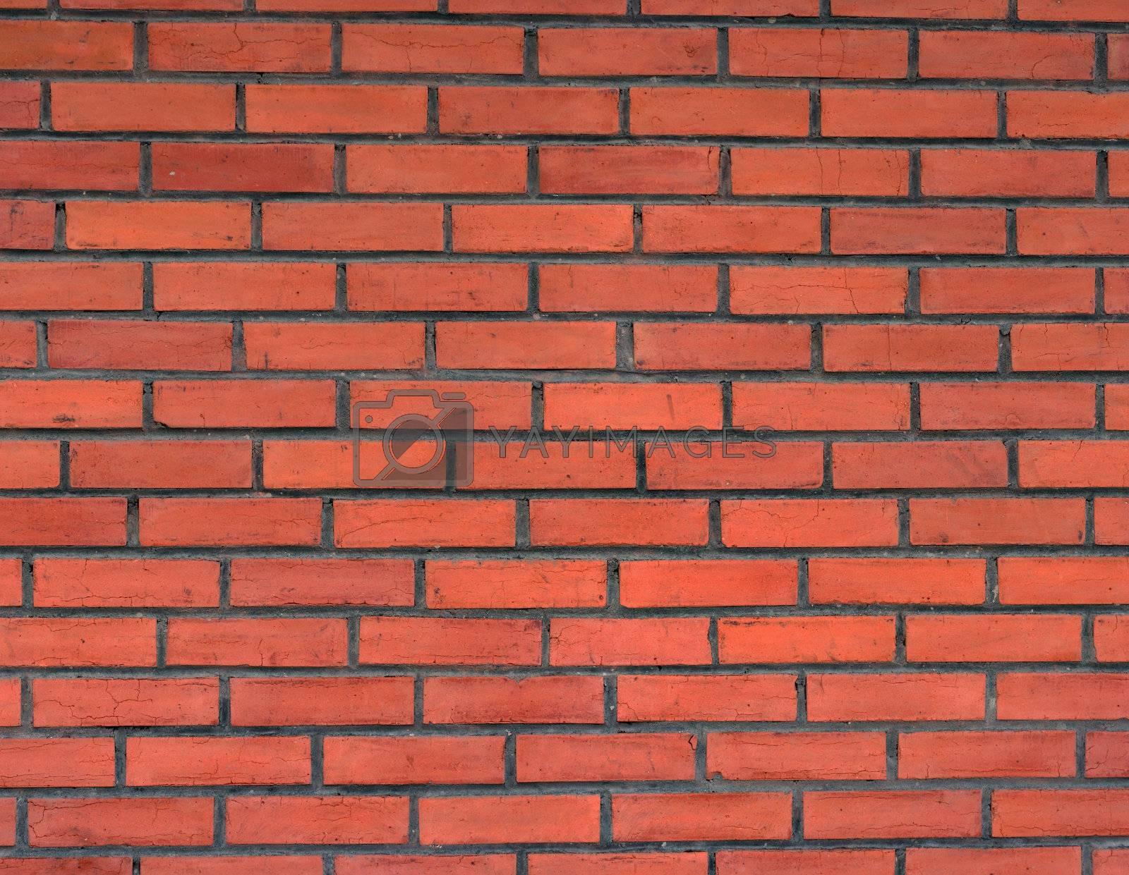 new wall made of clay bricks