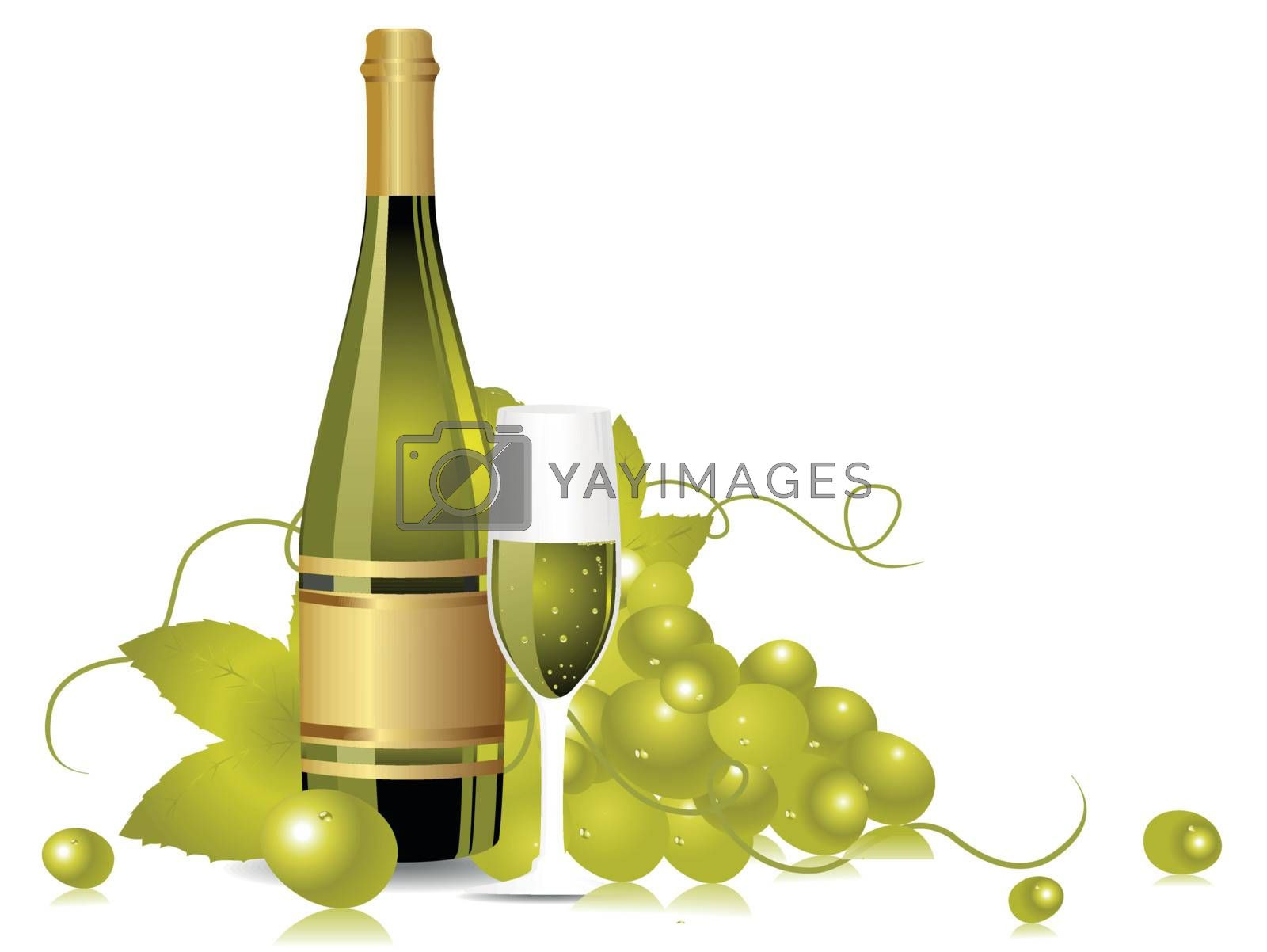 champange bottle, glass with grapesvines on white background