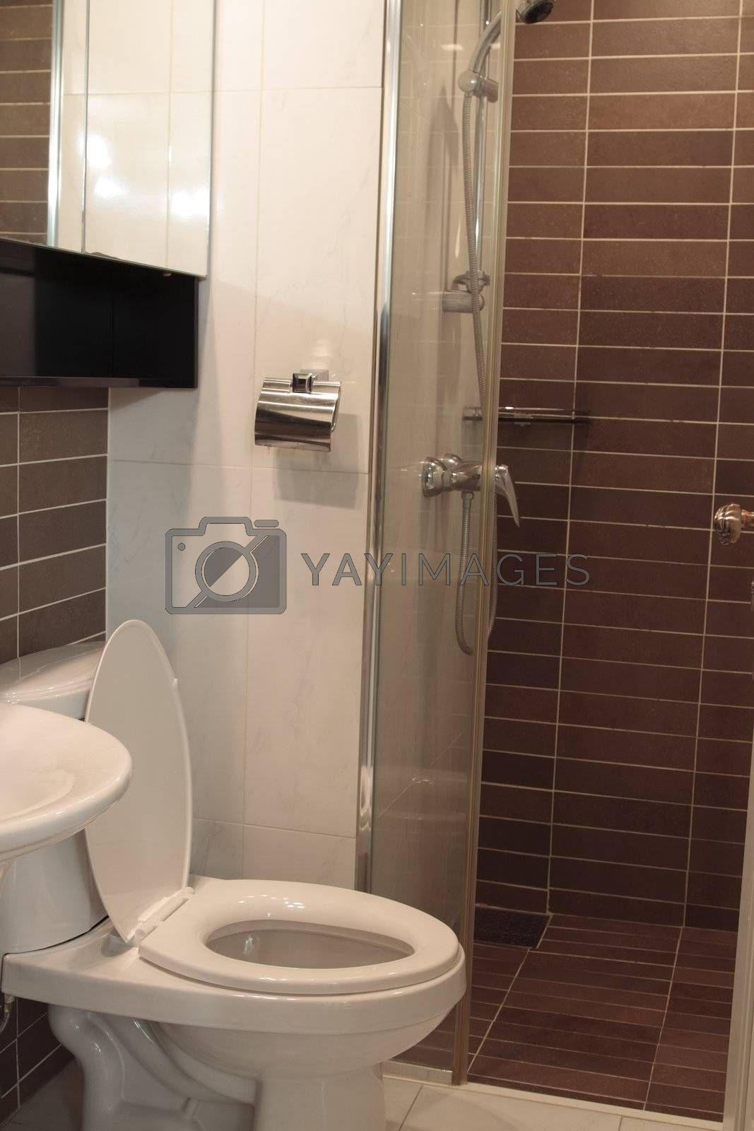 Modern toilet in home with shower  and lavatory.