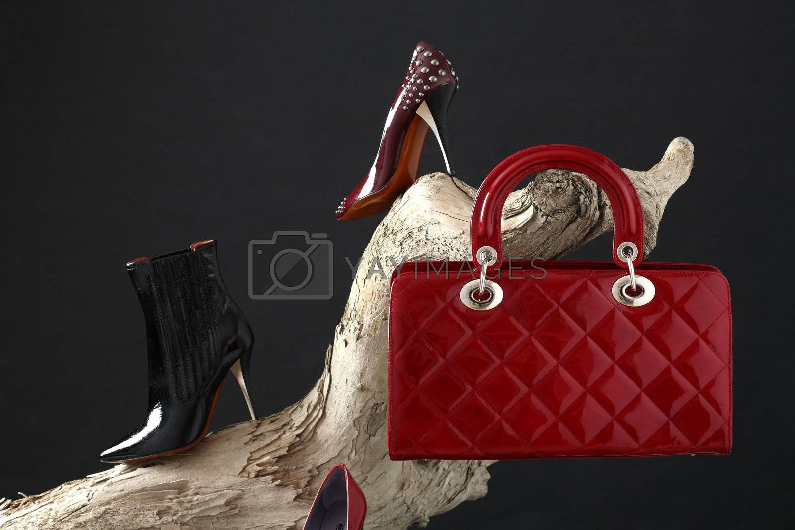 shoes and handbag composition