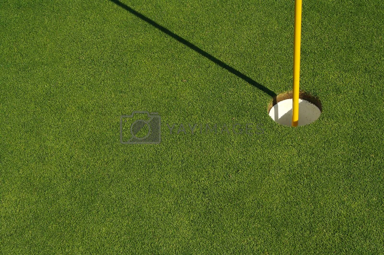 Lush, freshly mowed golf green, flag and cup with plenty of room for text on the left side.