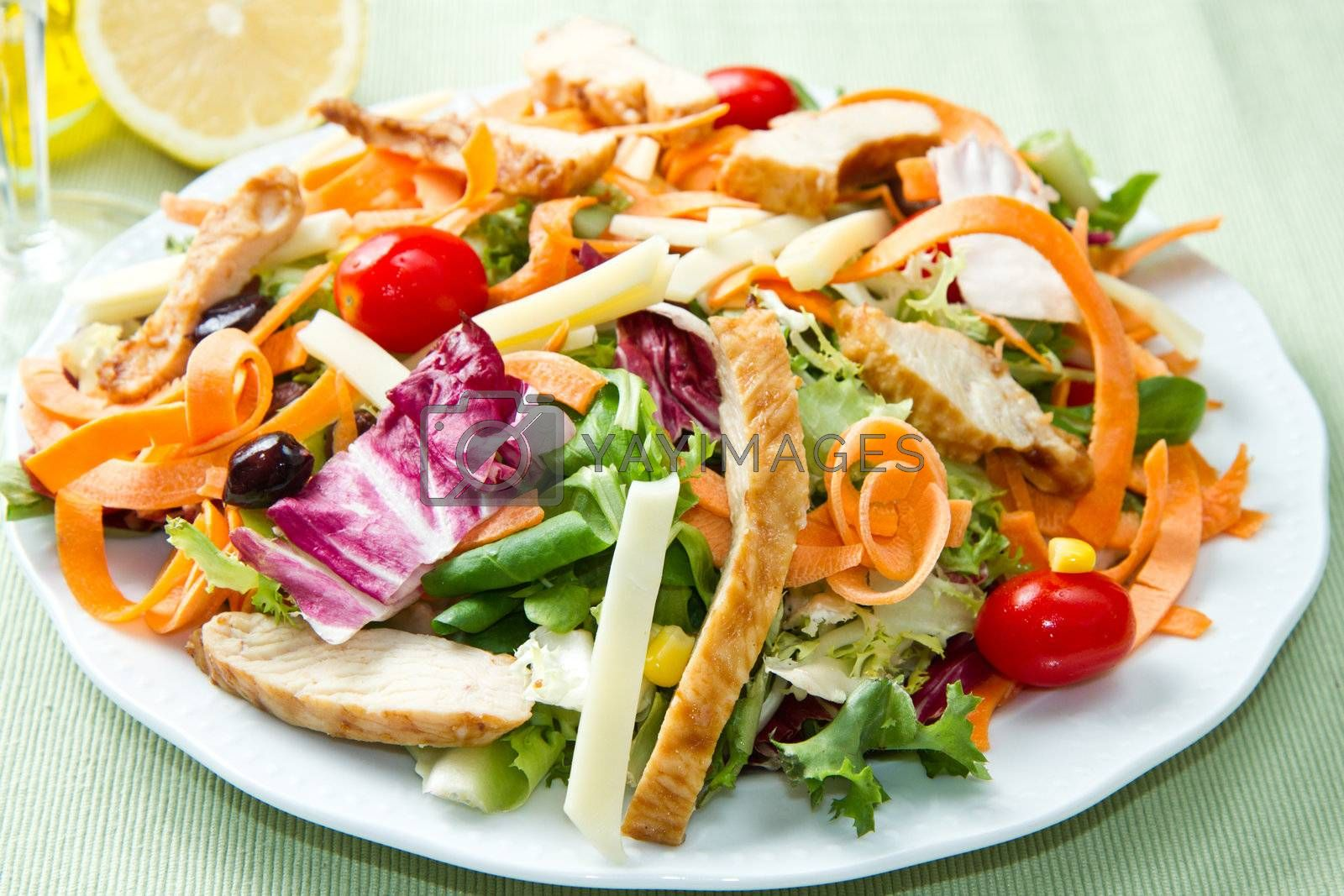 Chicken salad with fresh ingredients in the white bowl