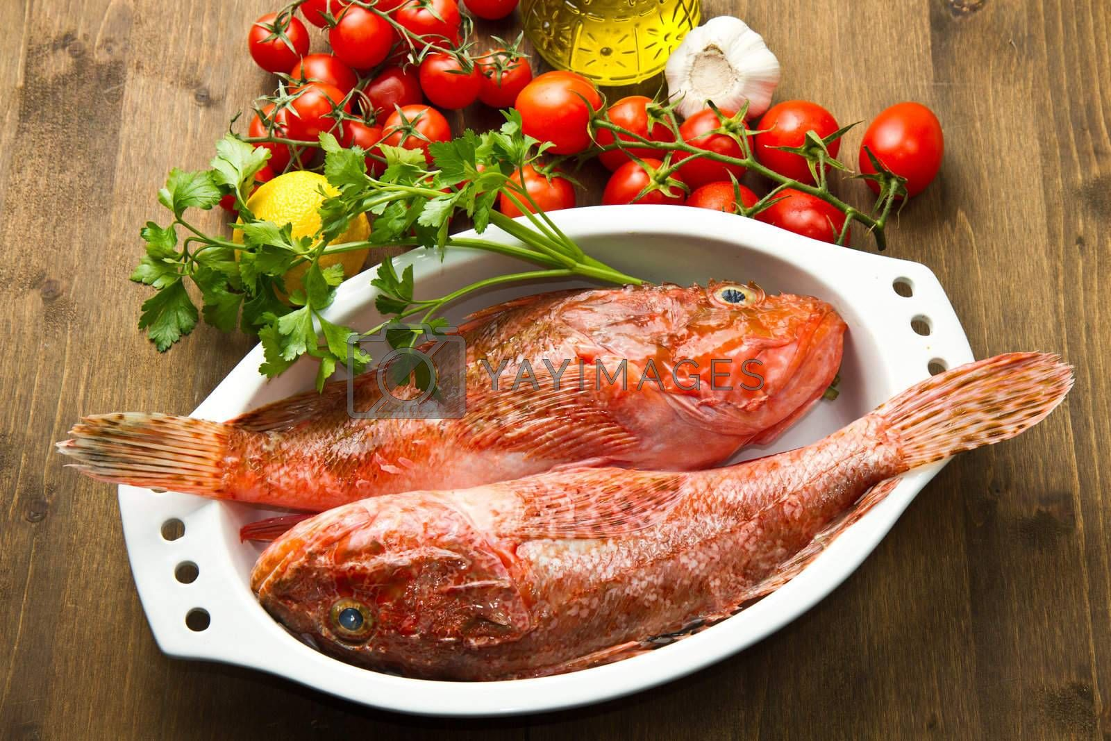 Redfish with tomatoes, parsley, garlic and olve oil