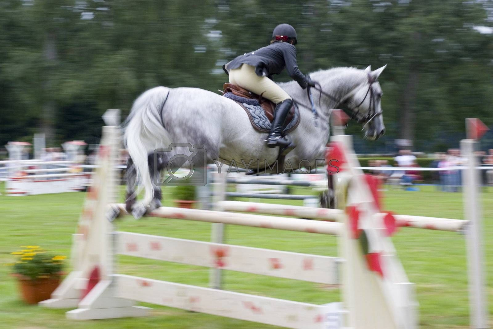 Jumping horse over an obstacle at a competition. Motion blurred.
