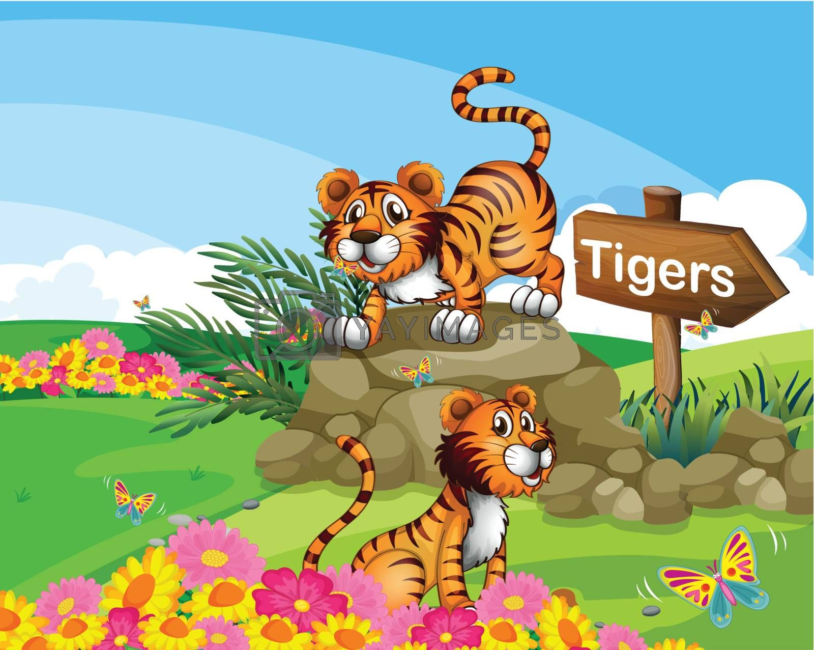 Illustration of the two tigers beside a signboard