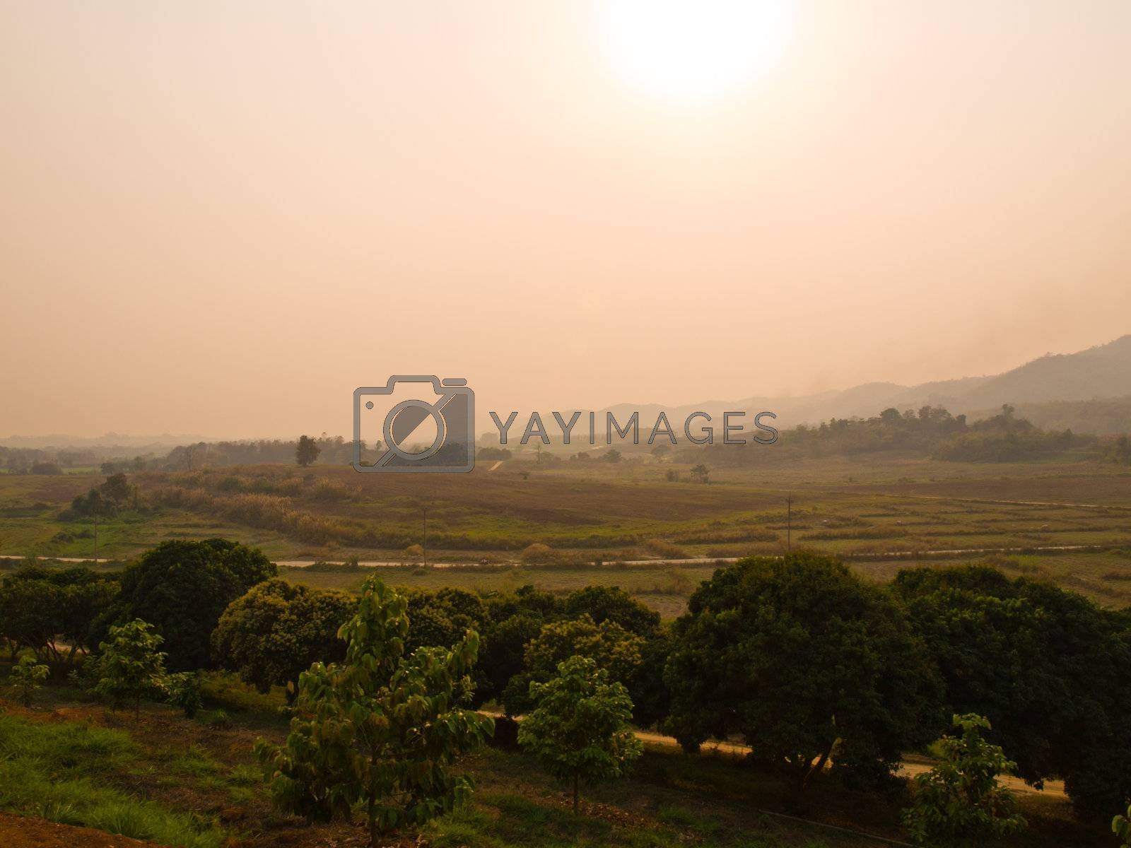Paddy field and mountainous sunset view in Chiang Rai, Thailand