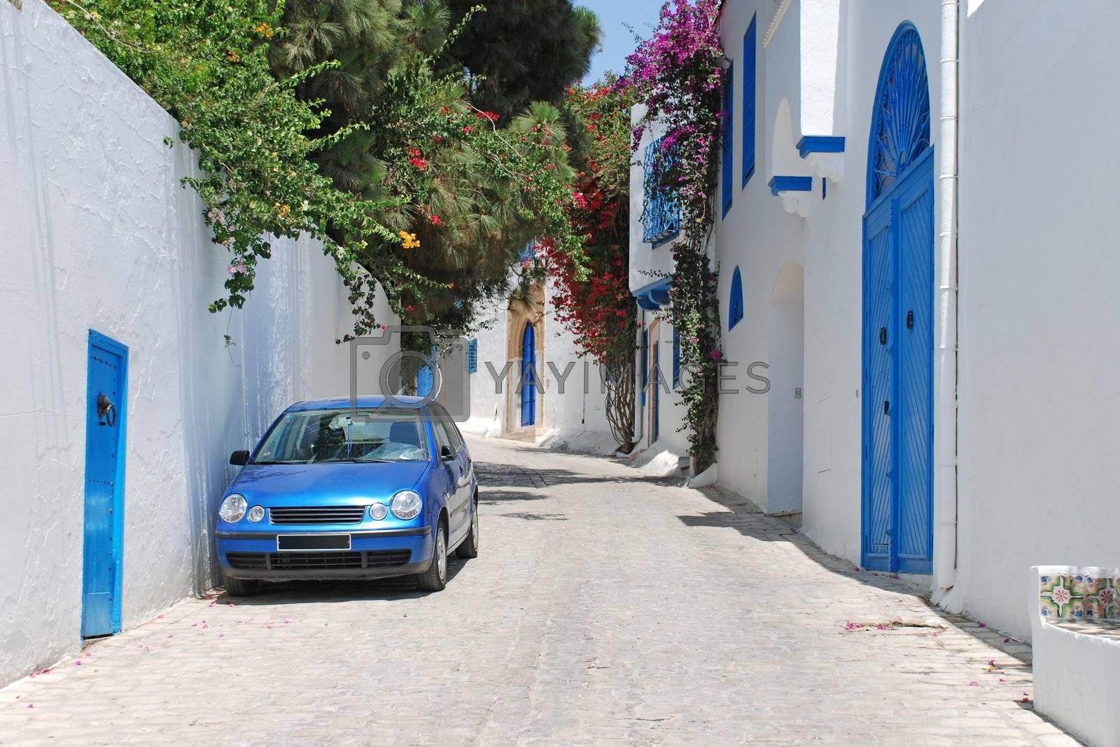 Sidi Bou Said, Tunisia by sergeyakovlev