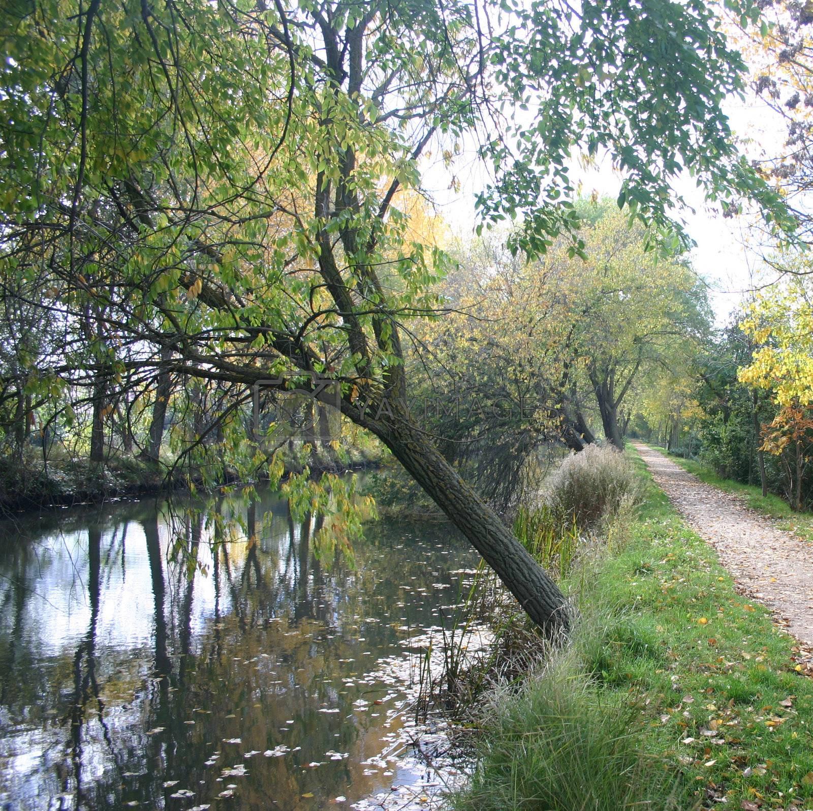 Canal Palencia by hospitalera