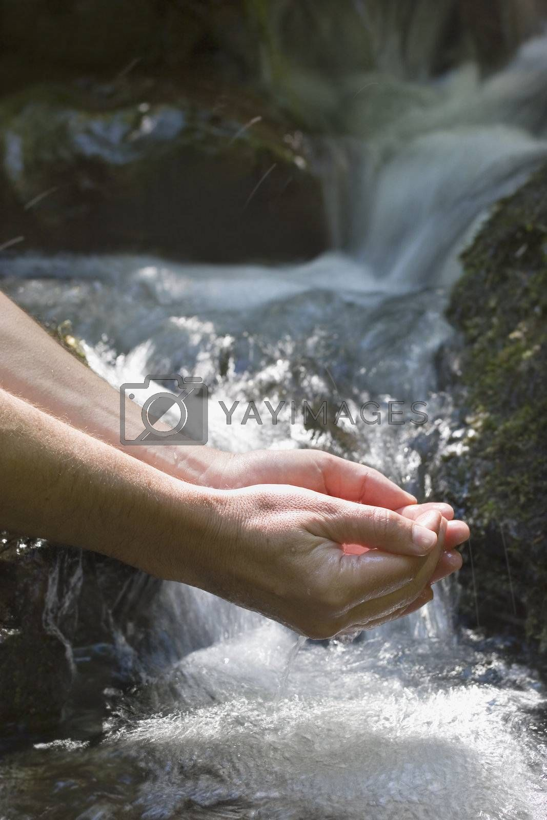 Male hands holding pure water of a mountain creek