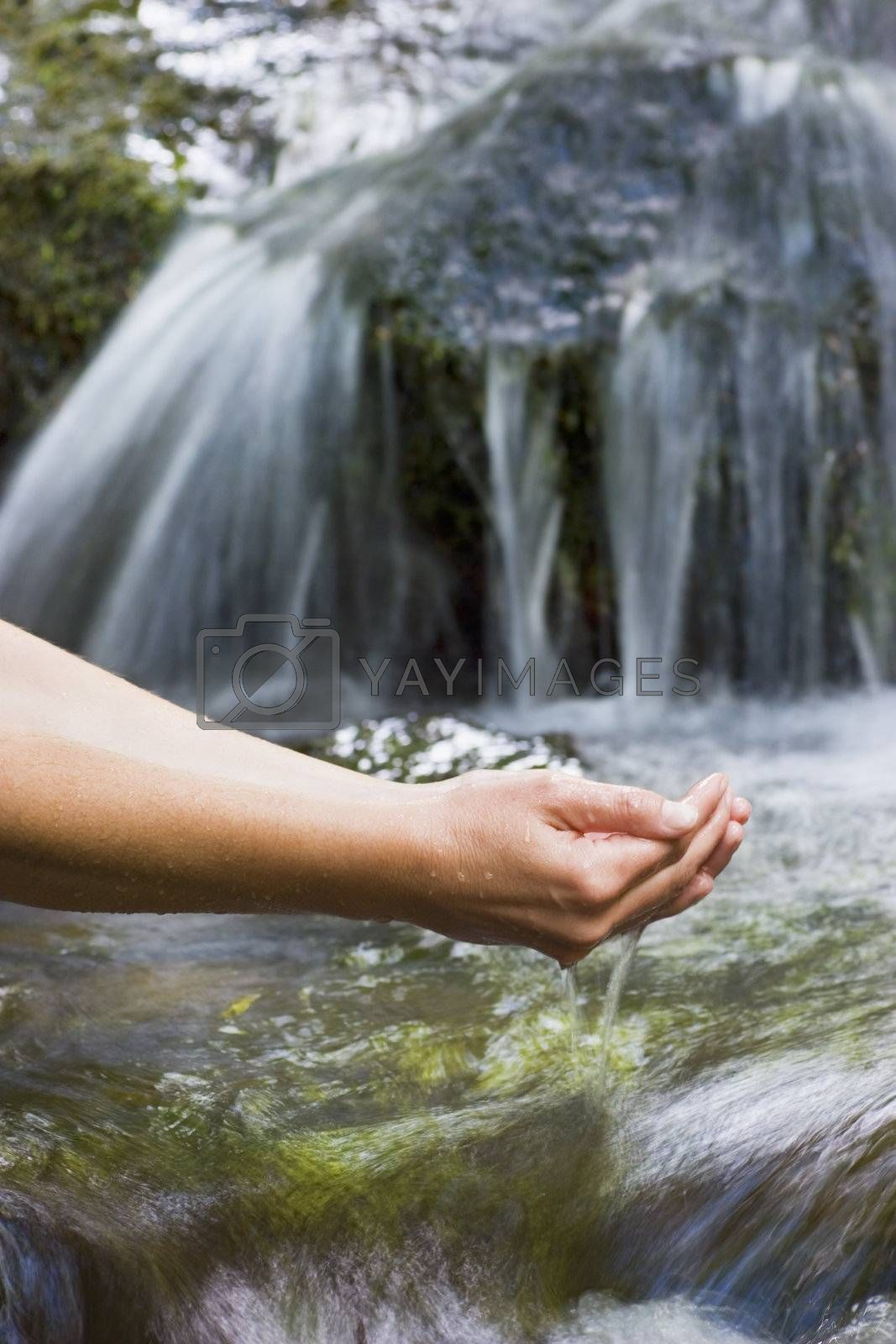 Female hands with fresh water of a mountain creek