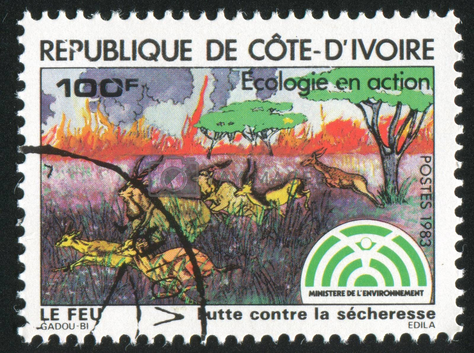 IVORY COAST CIRCA 1983: stamp printed by Ivory Coast, shows Animals fleeing, circa 1983