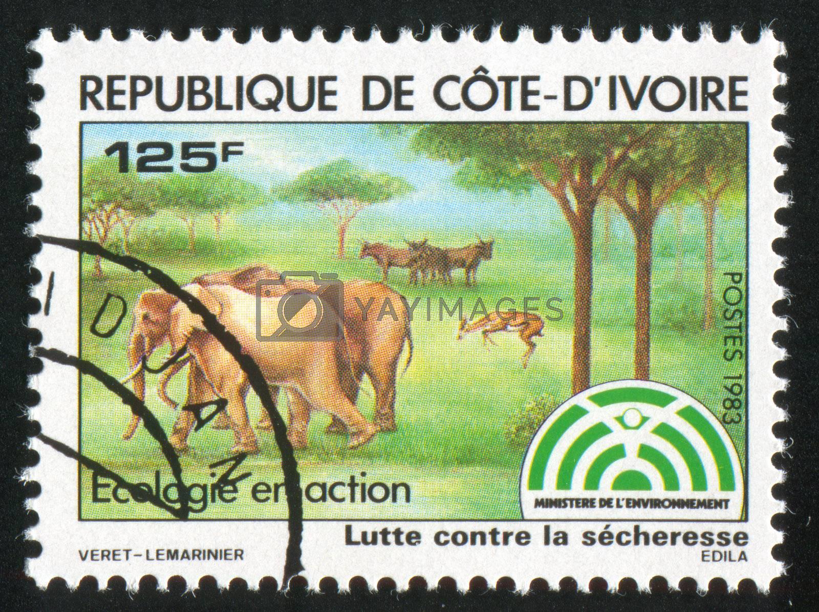 IVORY COAST CIRCA 1983: stamp printed by Ivory Coast, shows Animals grazing, circa 1983