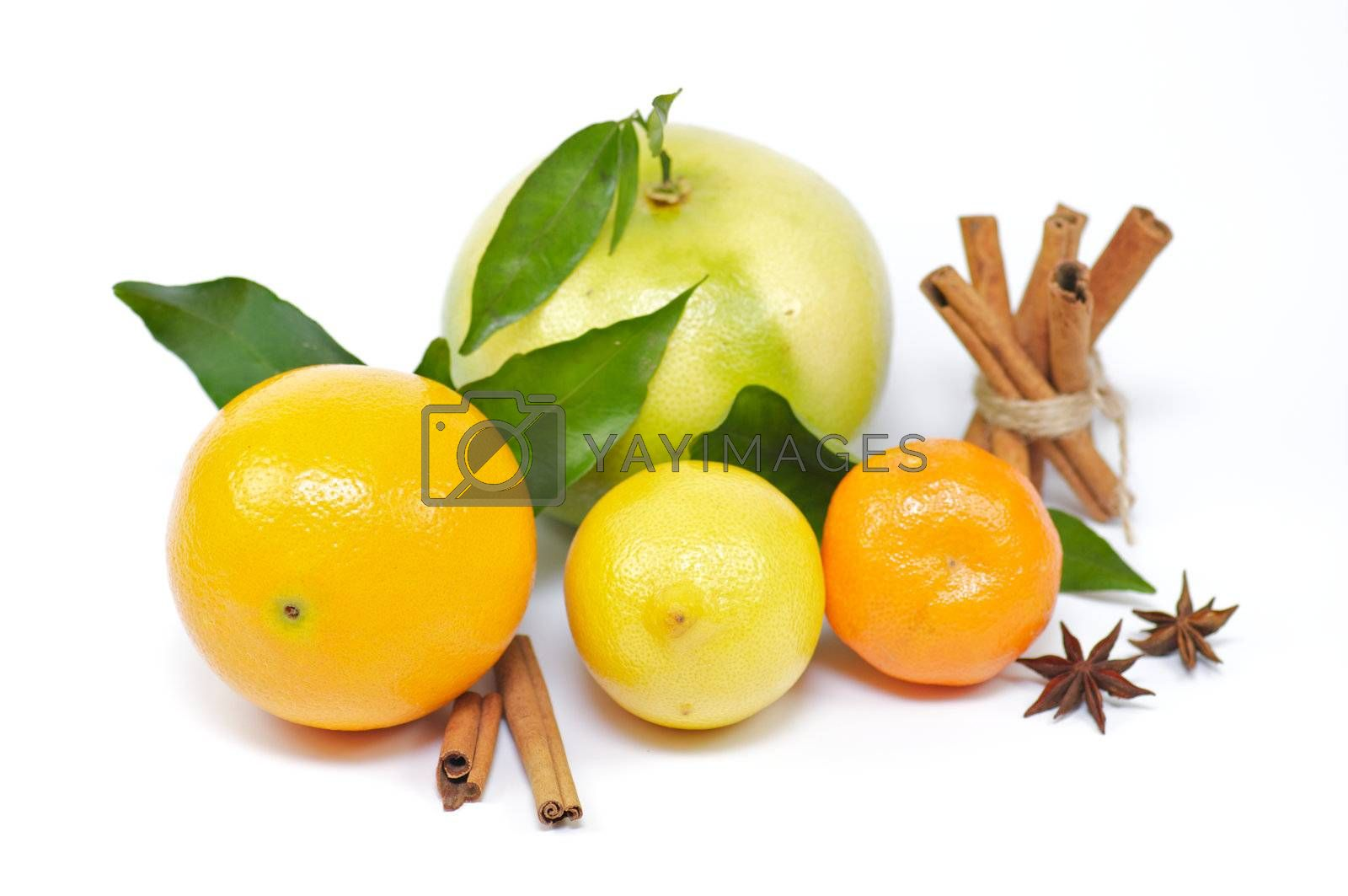 Citrus mix from orange, lemon, grapefruit and tangerine with cinnamon and anise
