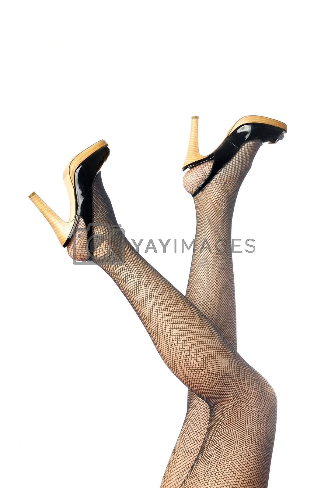 Photo of the woman legs in black stockings on a white background