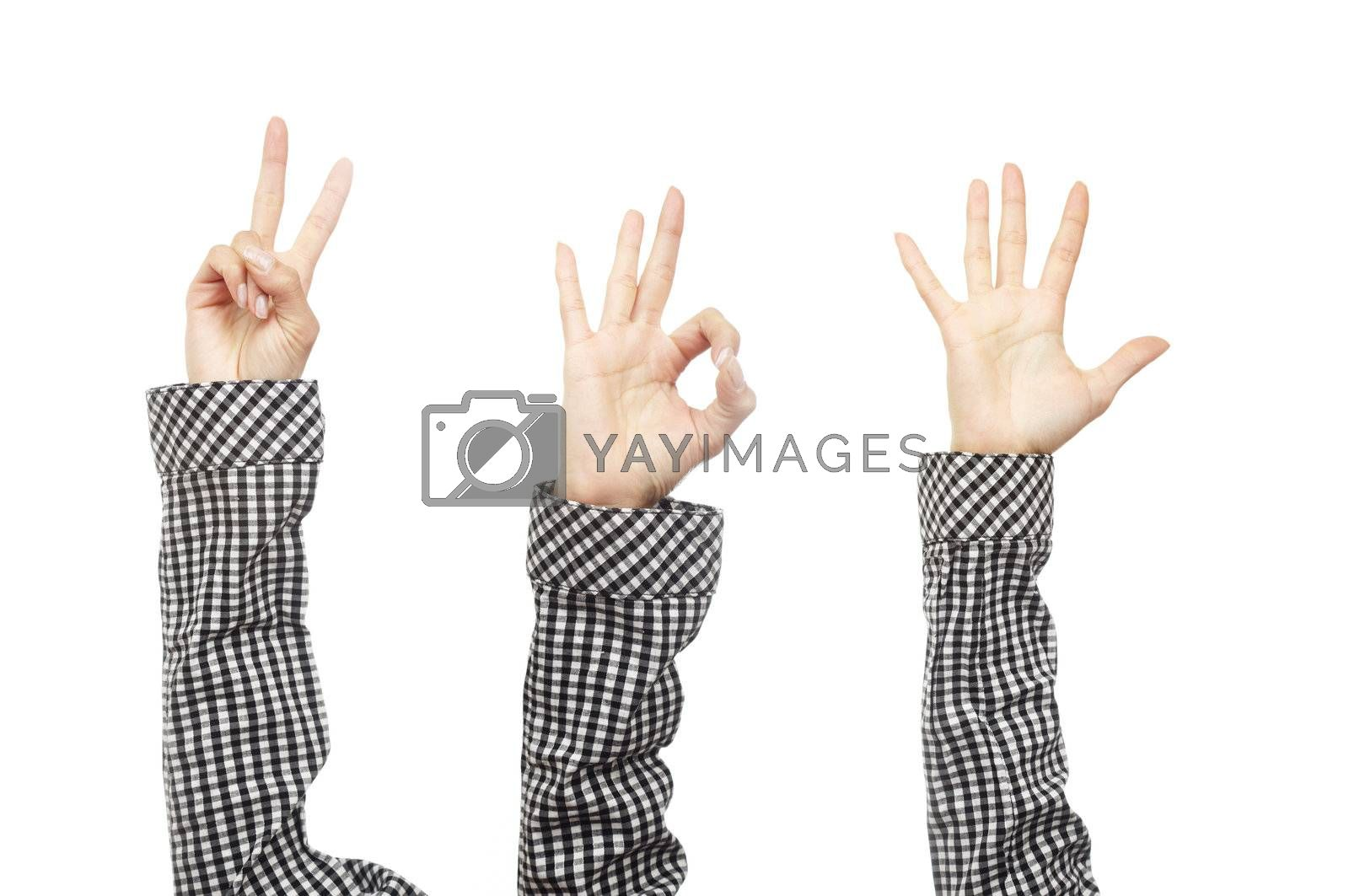 Close-up photo of the human hands in chequered shirt with various gestures on a white background