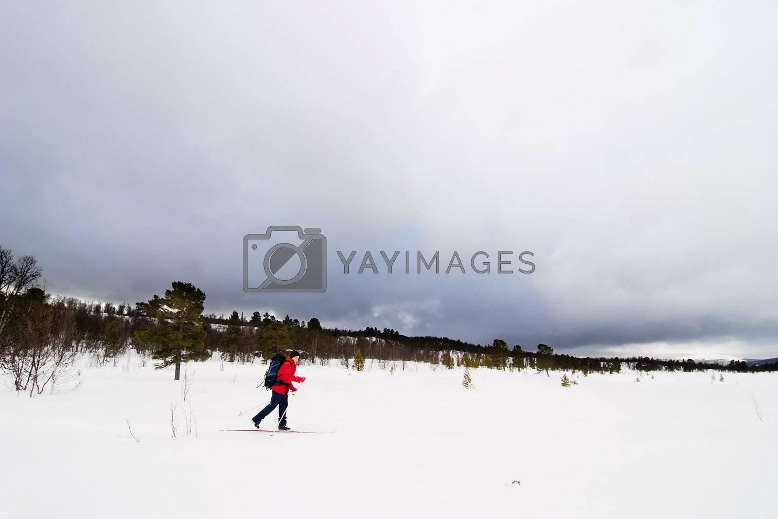 Skiing no a winter landscape