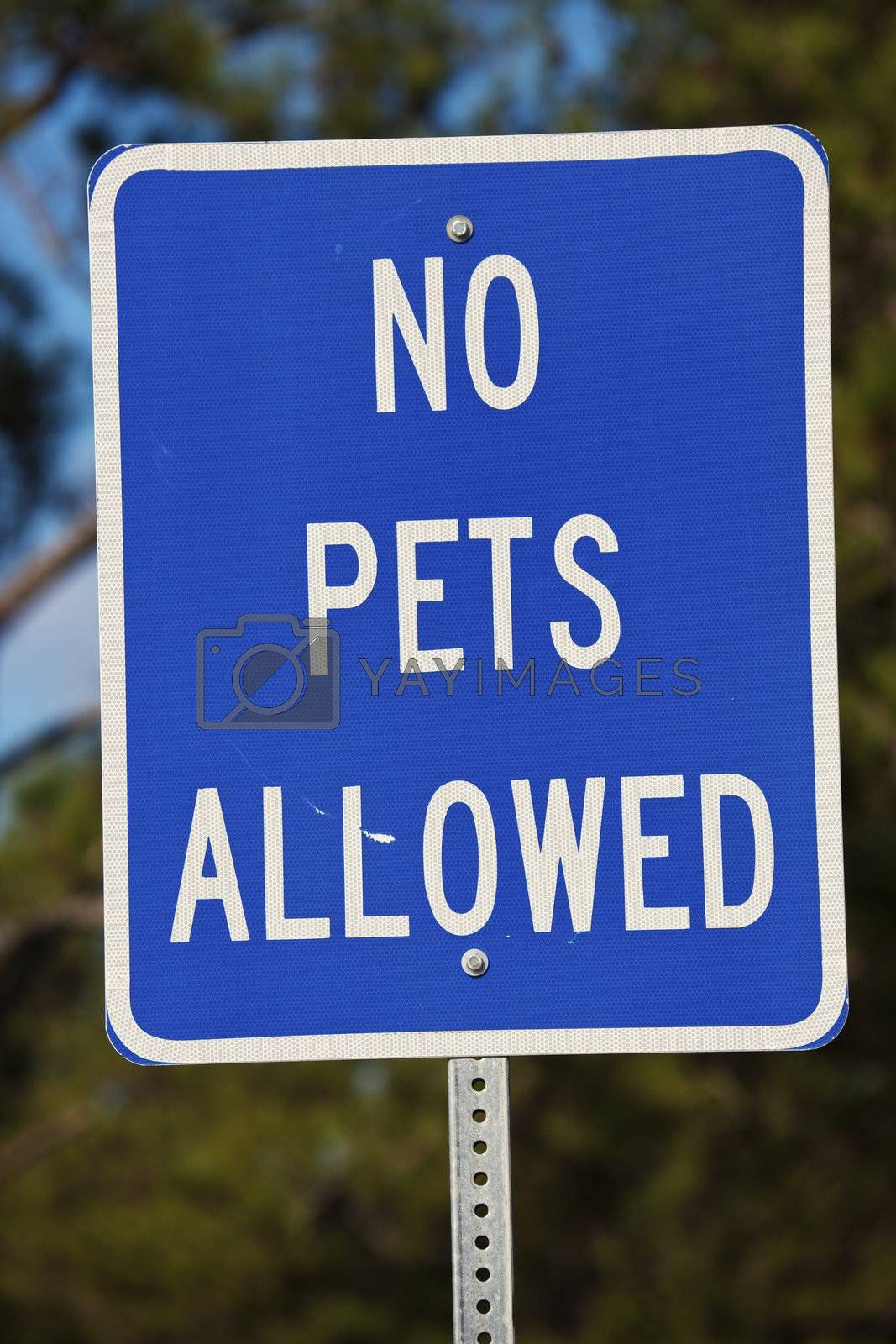 No pets allowed sign - seen in the park