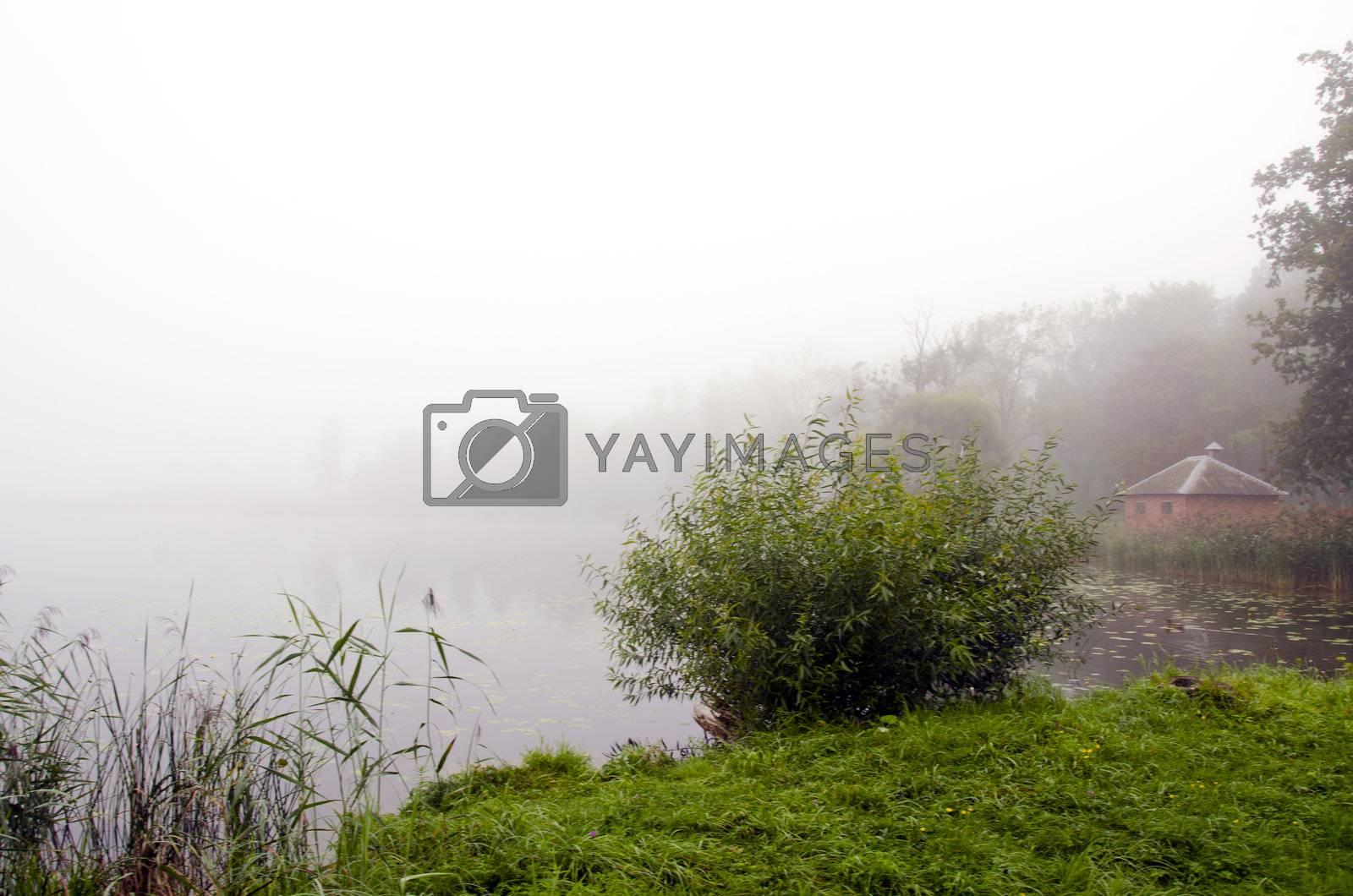 Mystic lake drowned in fog, green coastal vegetation and small hut on beach.