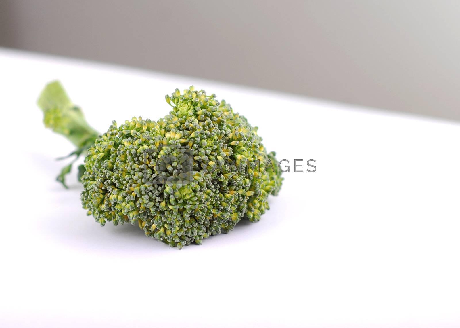 Ripe Broccoli Cabbage