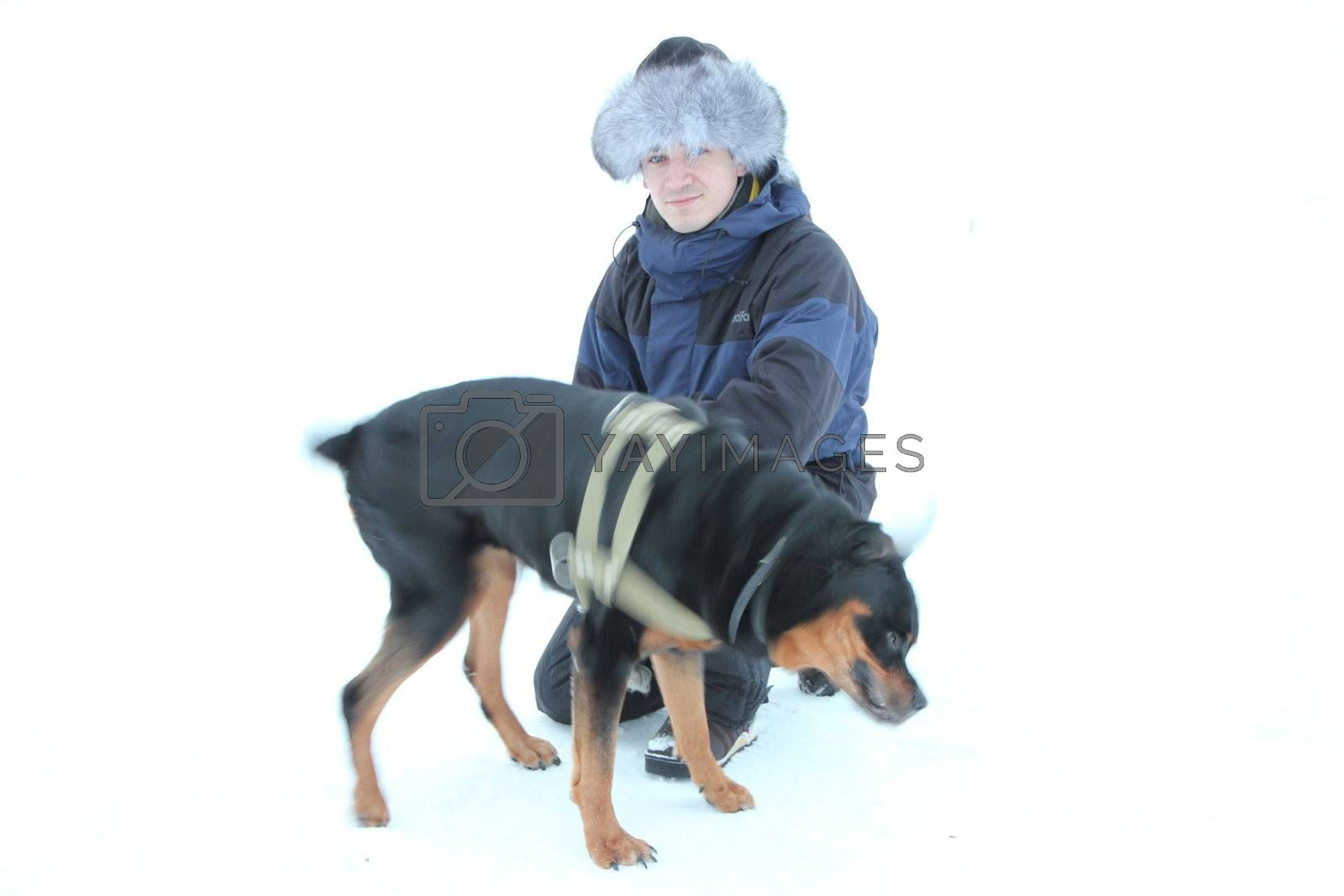 Men with rottweiler. Winter. isolated on white