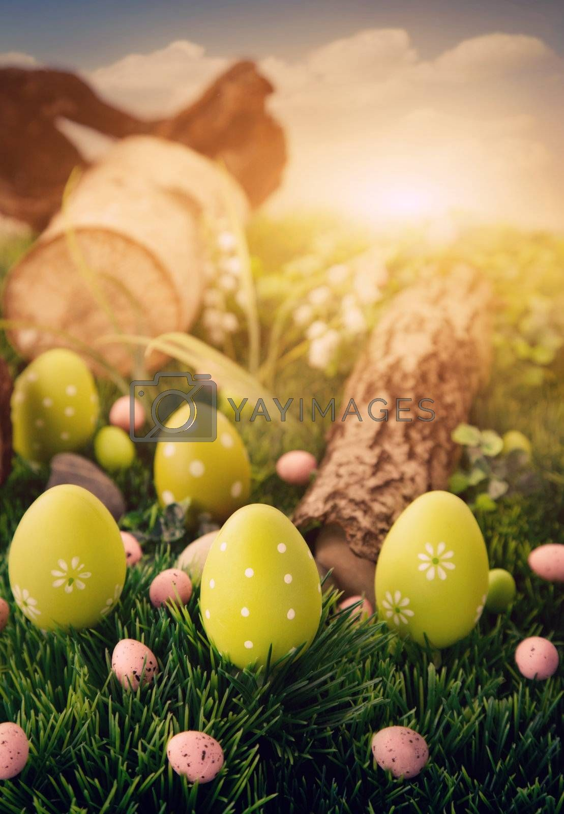 Colorful Easter eggs. Holiday nature concept with easter hunt. Eggs in the sunny meadow