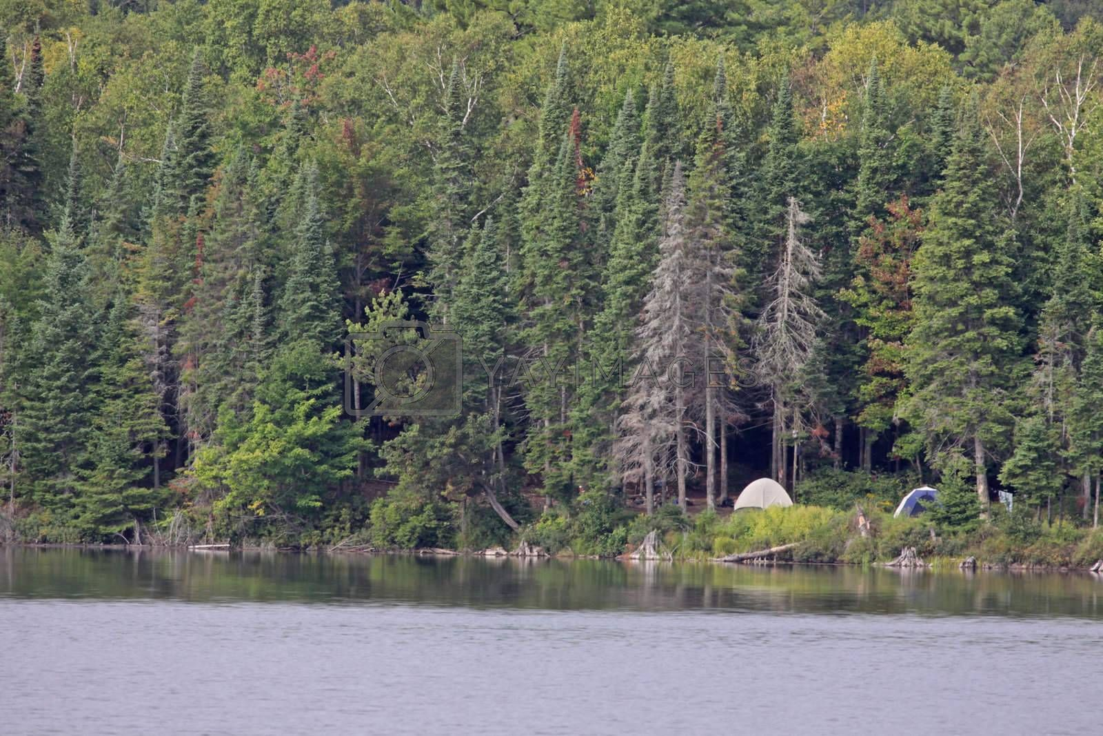 A campsite sitting in on the edge of a lake in Algonquin Provincial Park in Ontario, Canada.