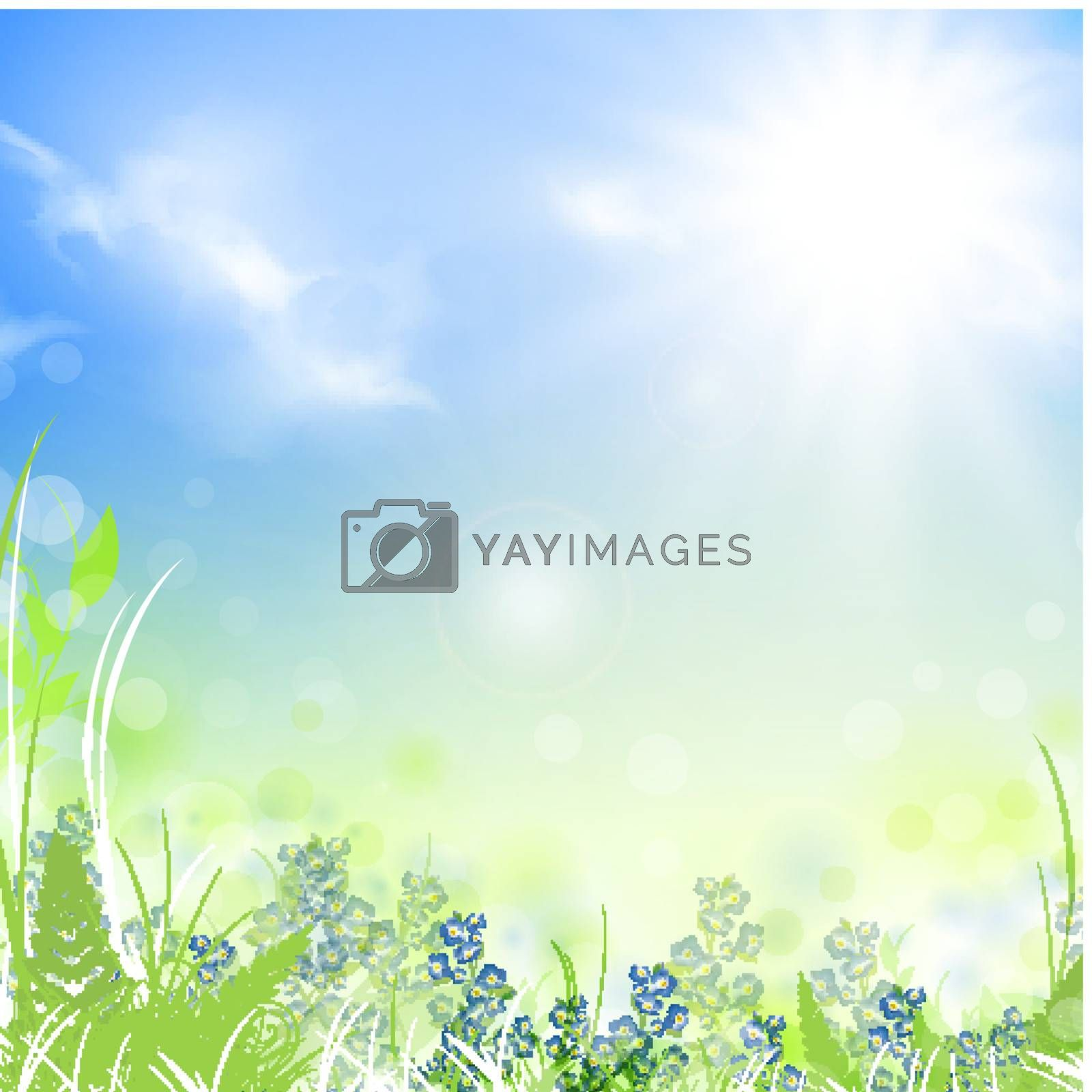 summer meadow with green grass over blue sky with sun, copyspace