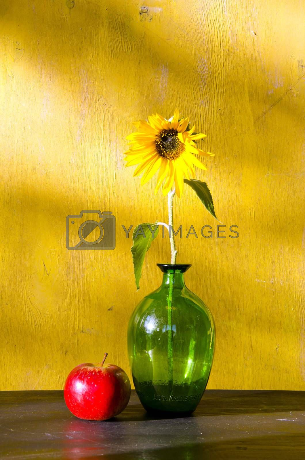 Sunflower in glass vase and red apple. Still life.