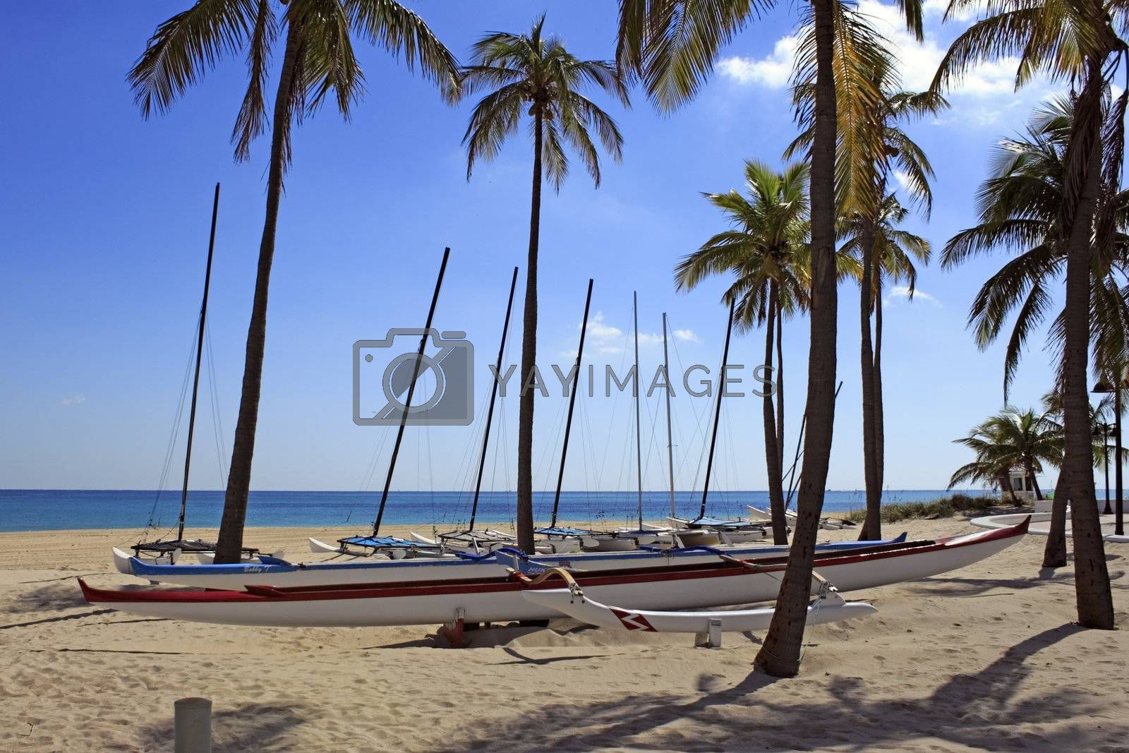 FORT LAUDERDALE, FLORIDA - NOVEMBER 1: About a dozen outrigger canoe boats available for renting to sail on the ocean north of South Beach Park on November 1, 2012 in Fort Lauderdale, Florida.