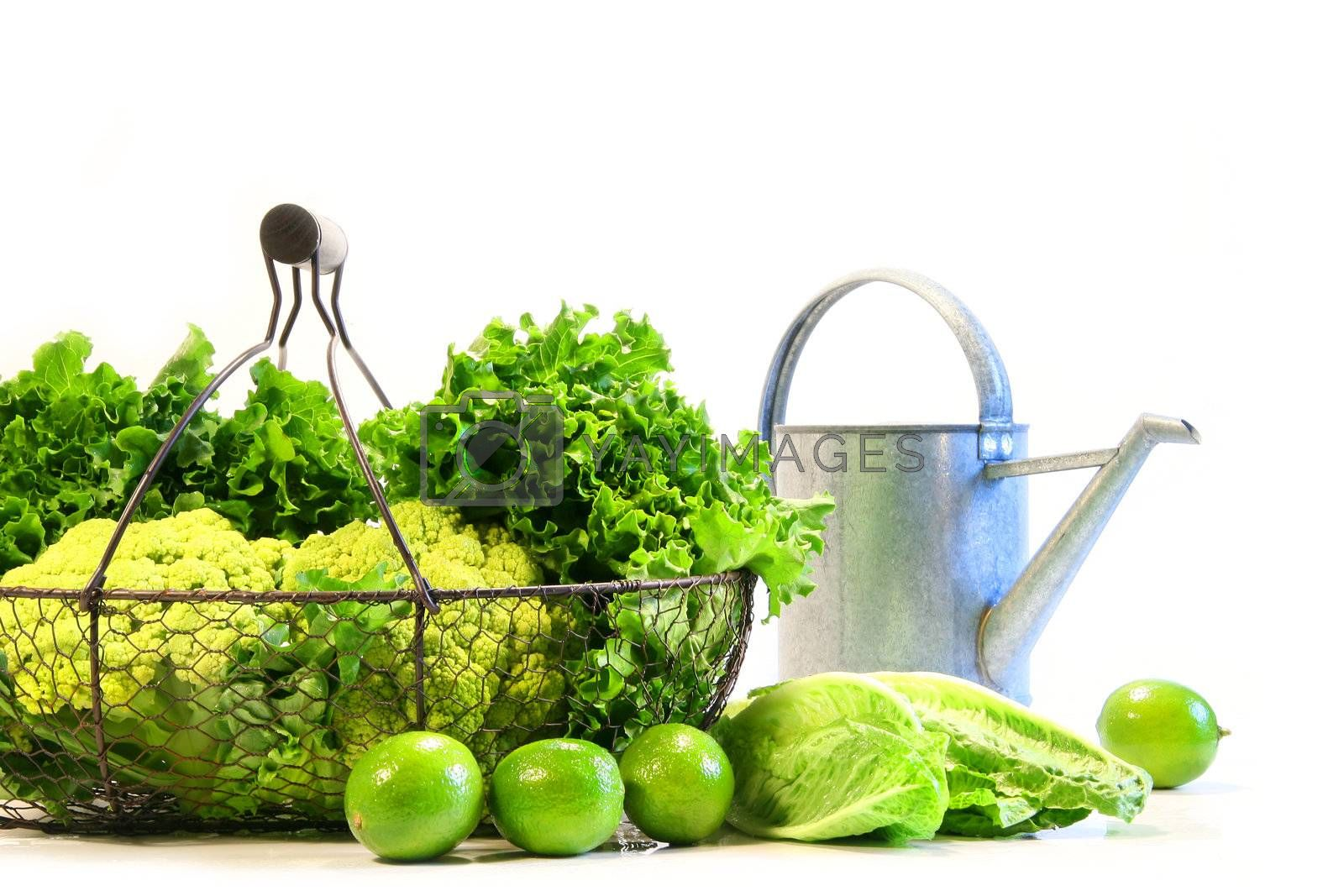 Vegetables and limes with watering can on white background