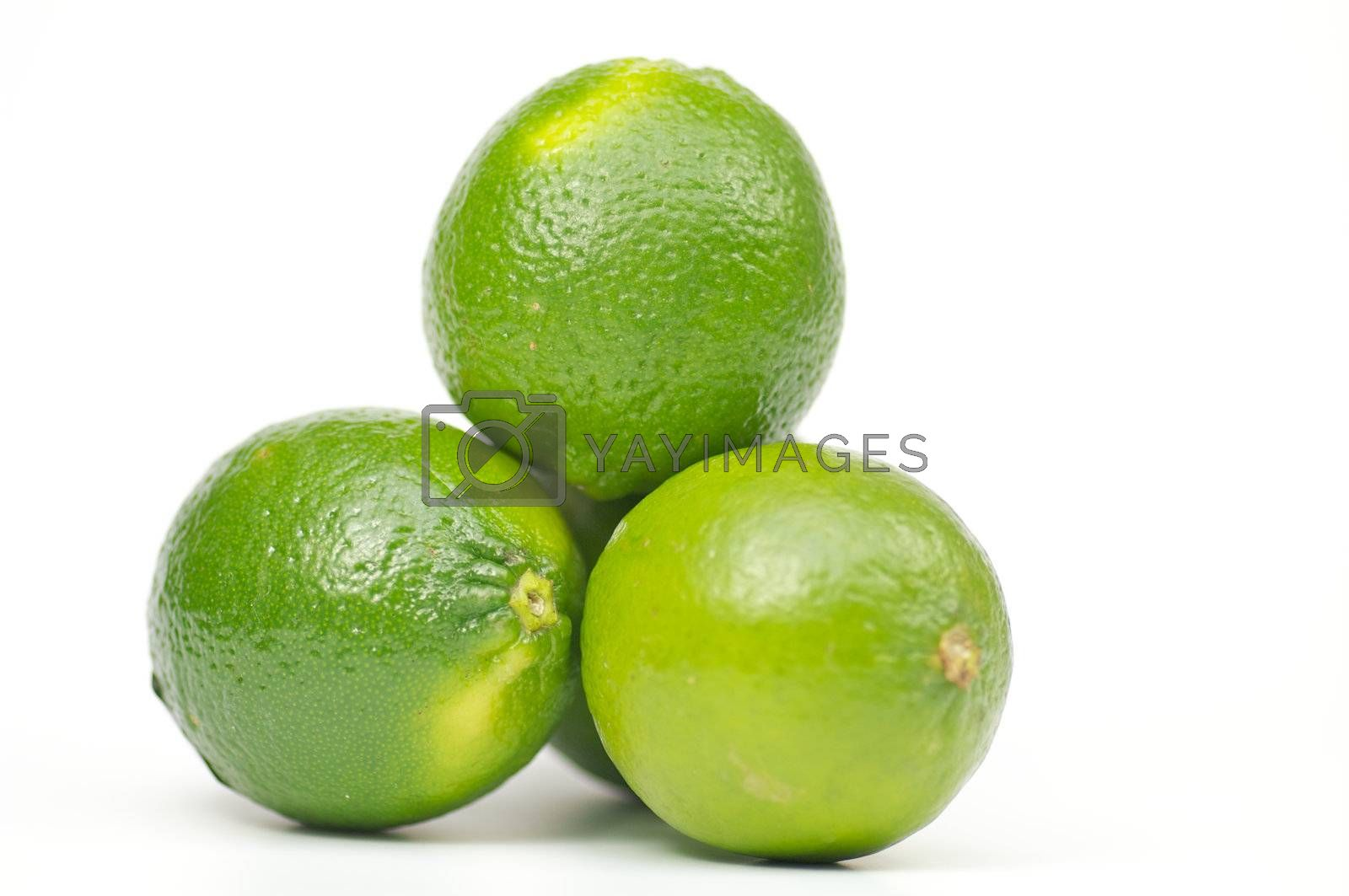 Three green limes on white background