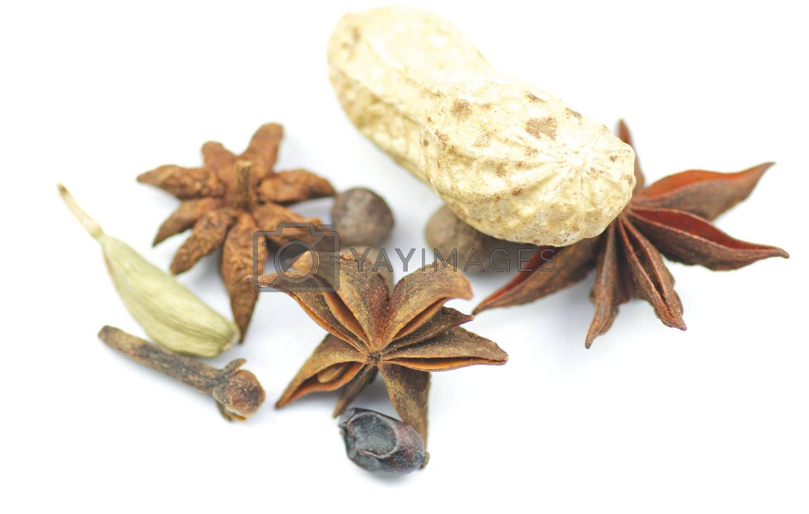 Anise, cardamon and nut isolated on white background