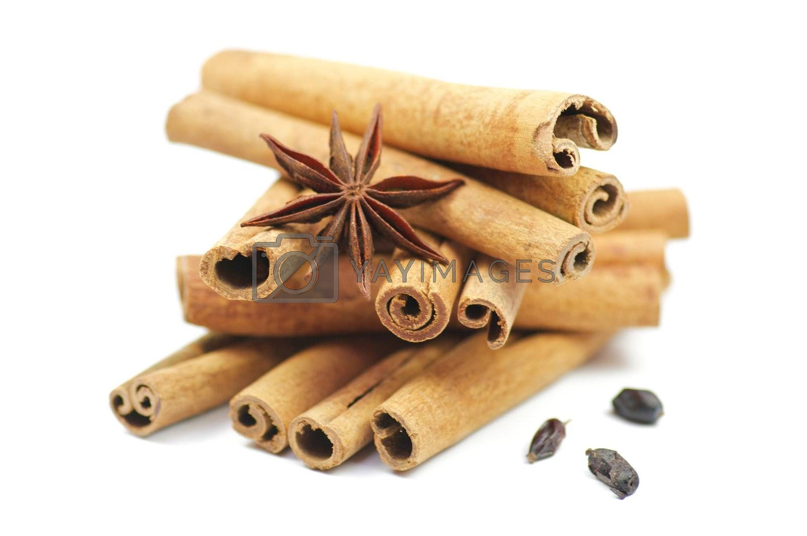 Cinnamon sticks and anise with barberry isolated on white background