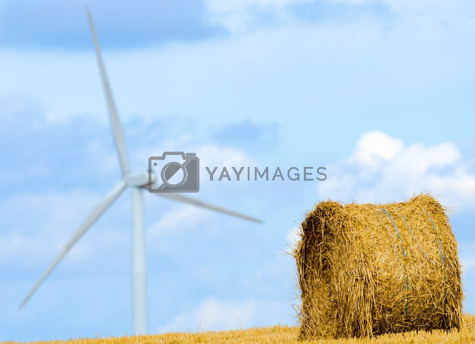 straw ball ,windmills in the background