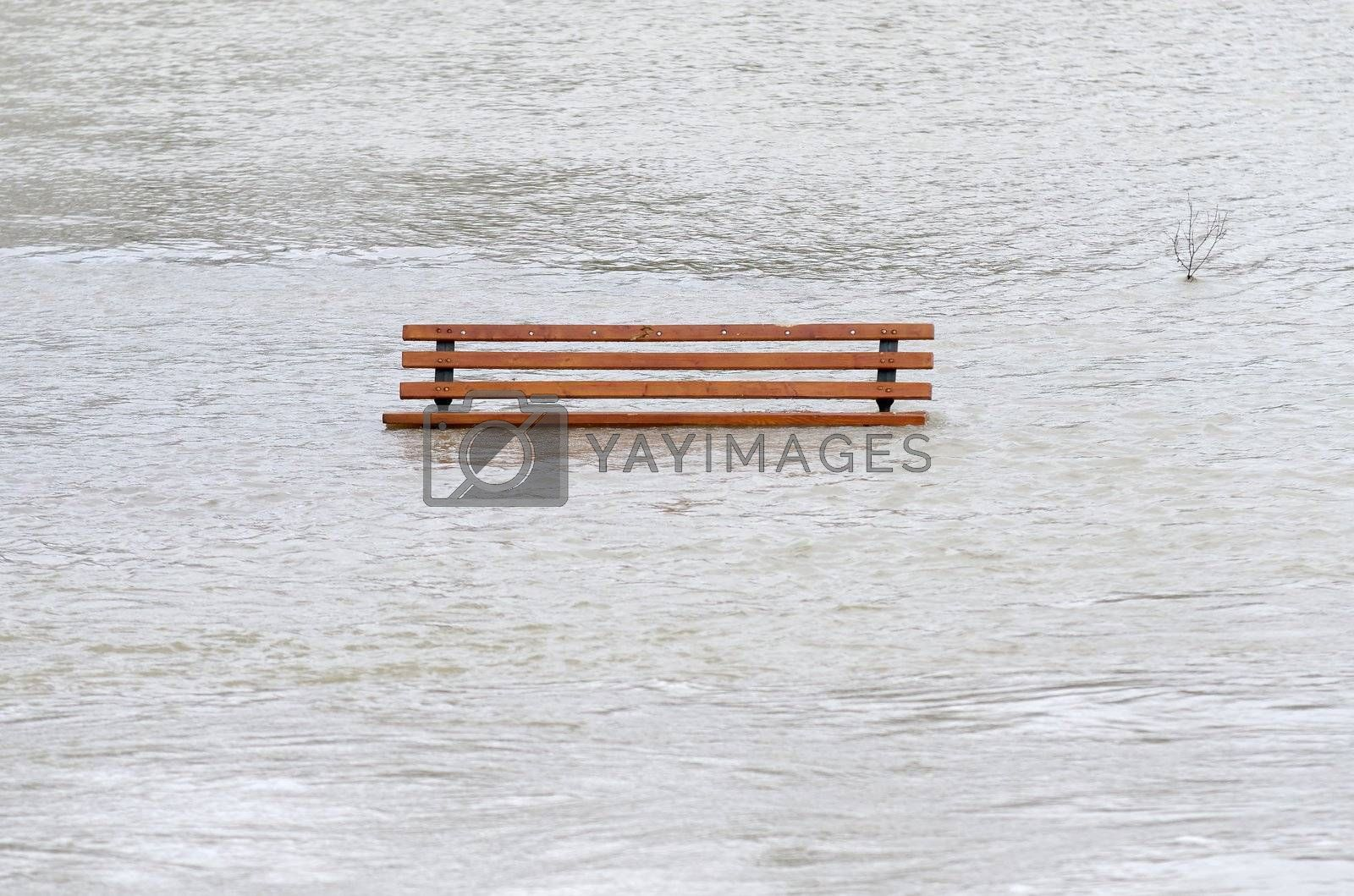 a  park bench surrounded by water