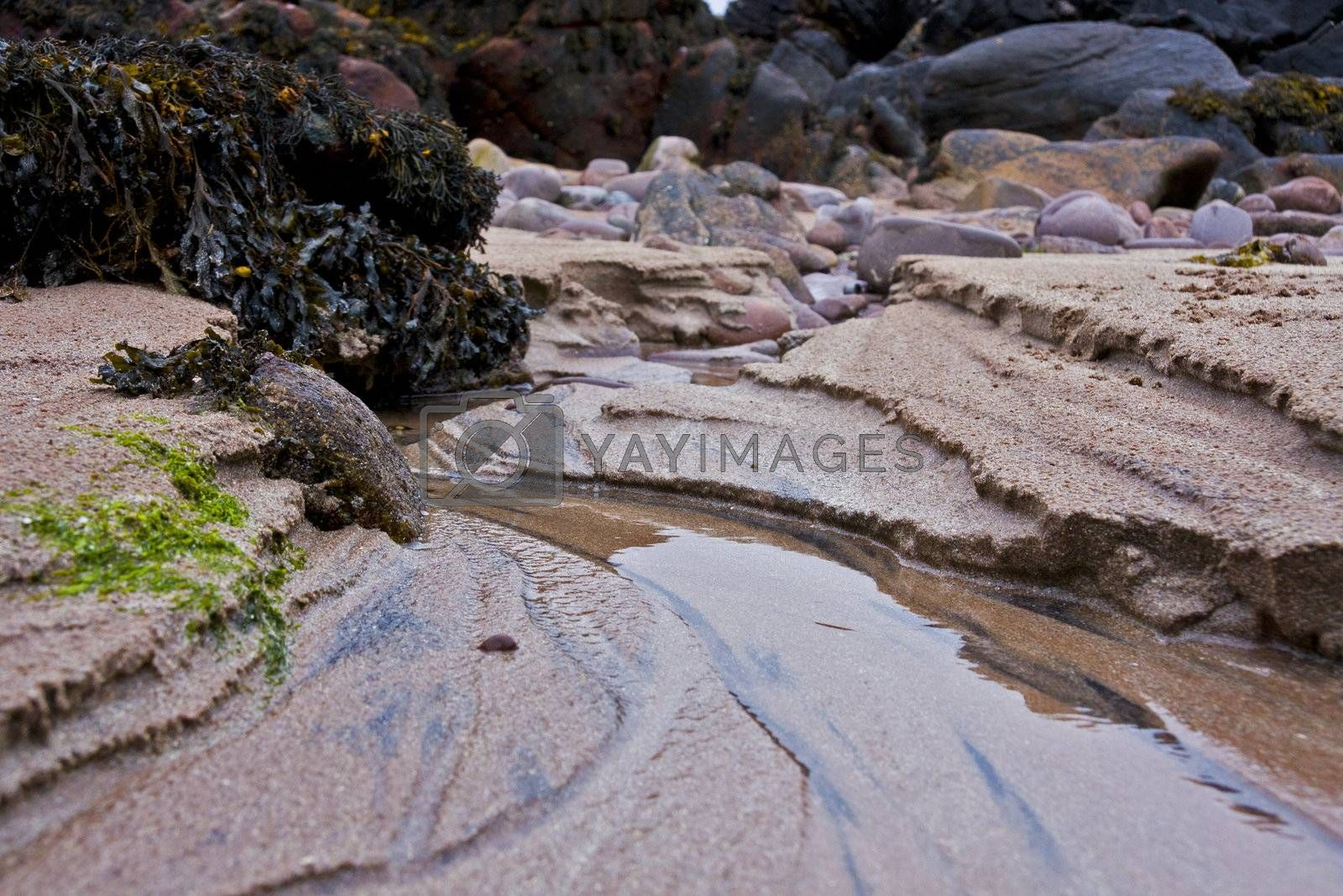 closeup of costal scene with sand, water and stones