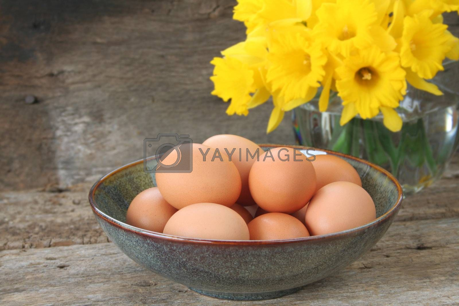 Bowl of brown eggs ready to be cooked or colored for Easter.  An arrangement of daffodils in the background and room for copy space.