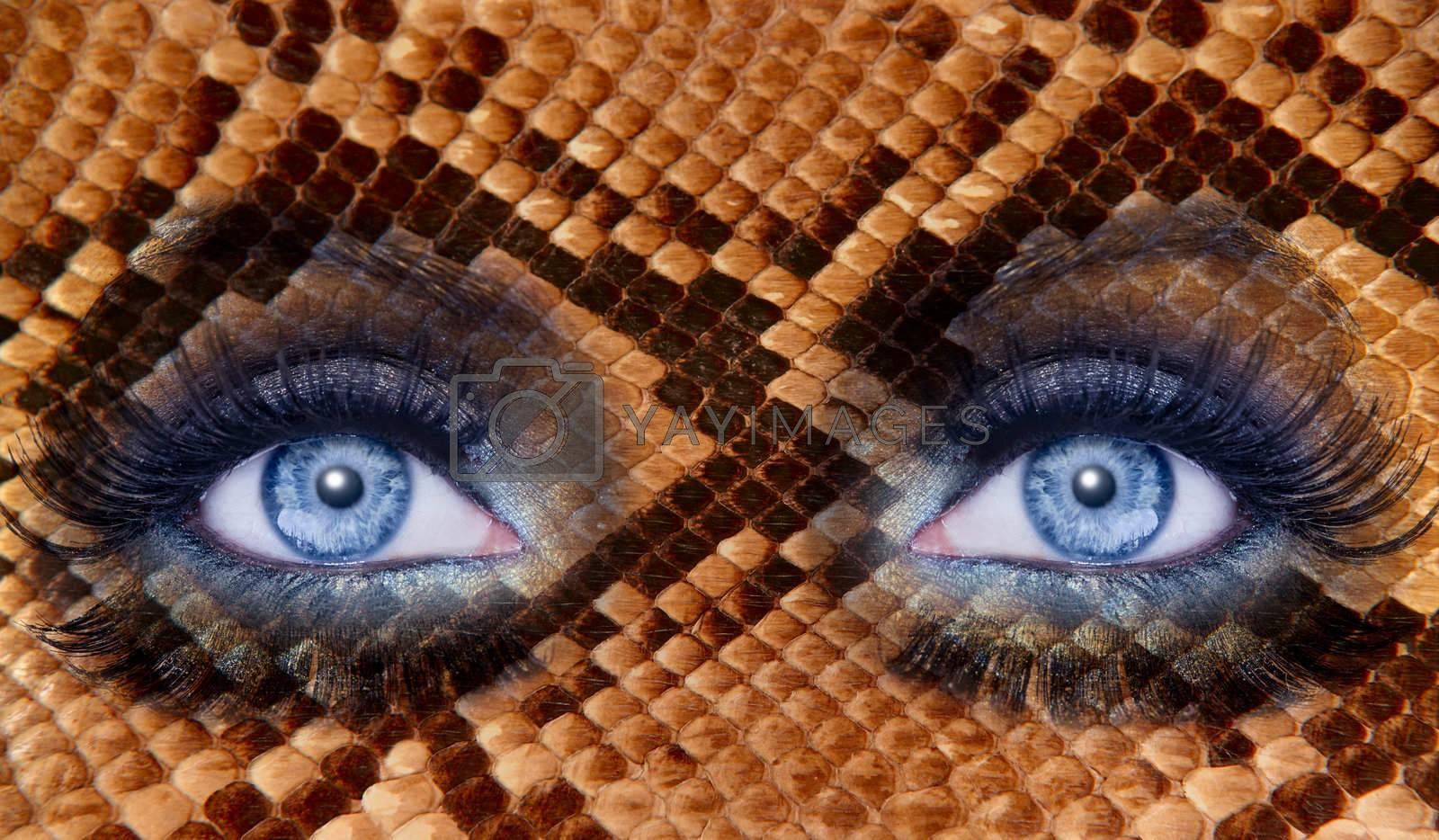 blue fashion makeup eyes snake skin texture animal wildlife metaphor